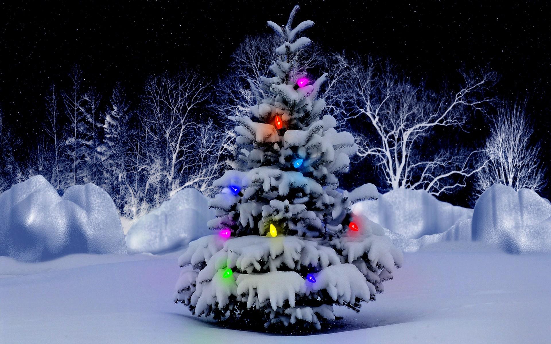 christmas tree desktop background (74+ images)
