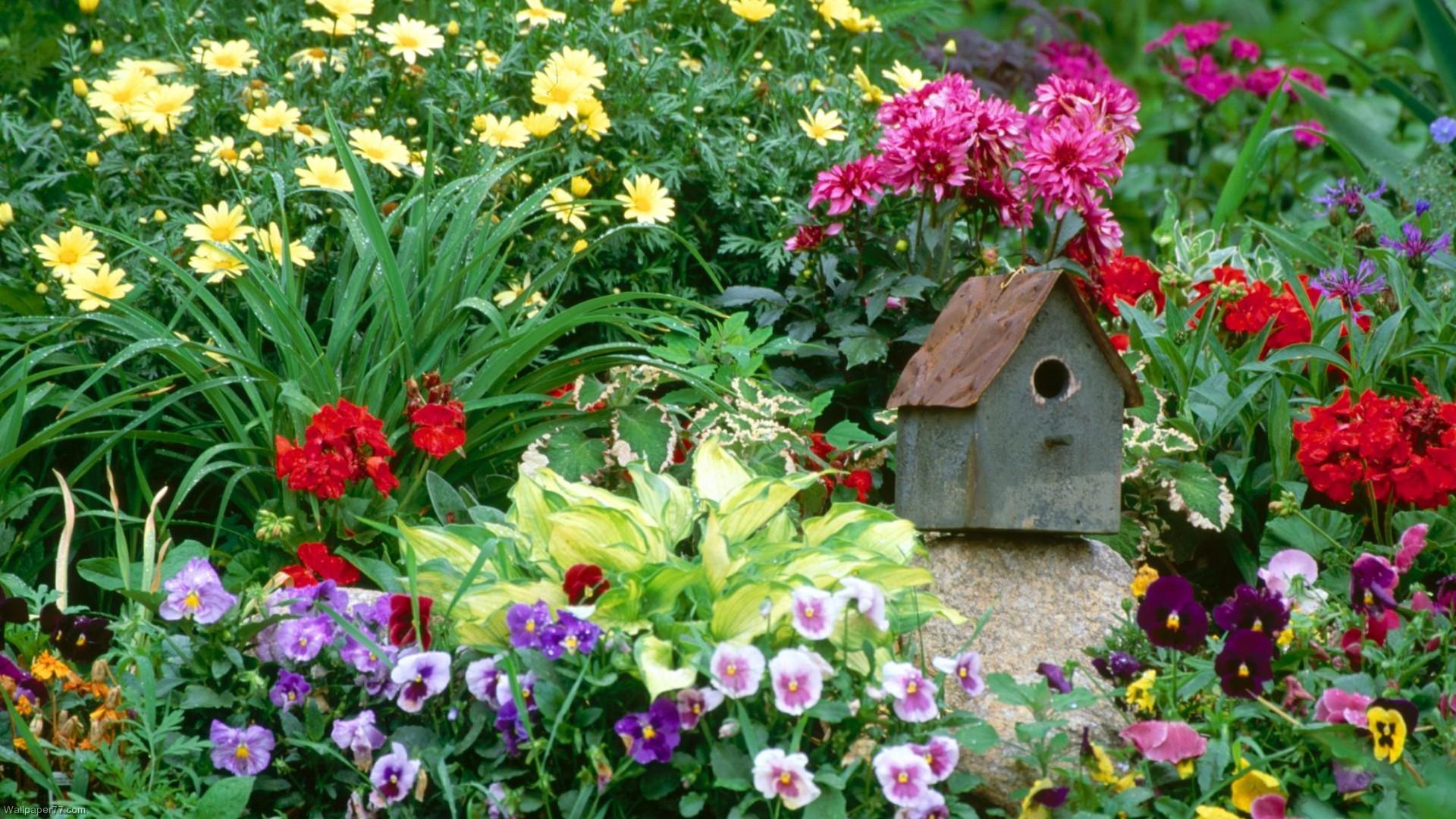 Summer Flower Garden Wallpaper 57 Images