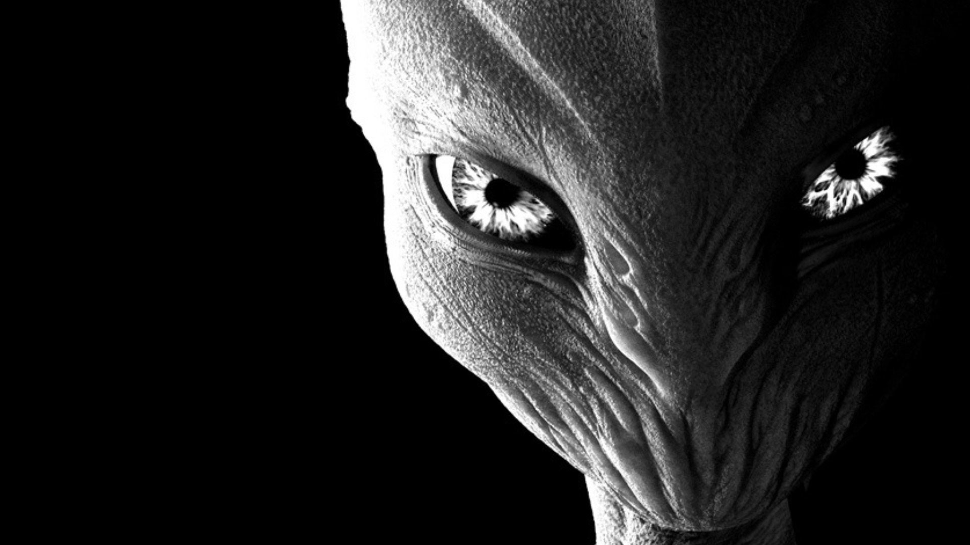 Alien Wallpaper Hd Desktop 71 Images