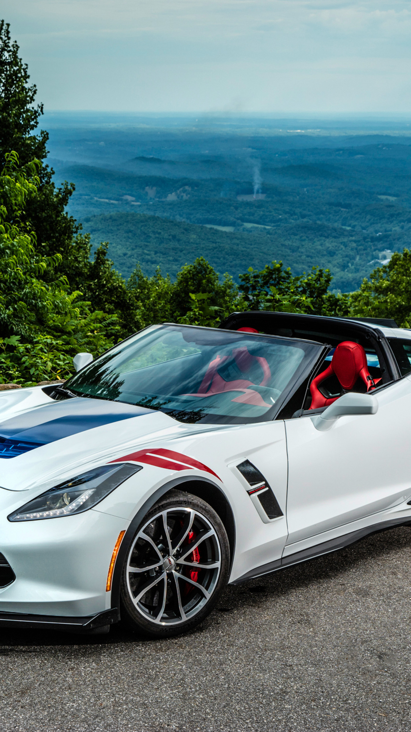 1440x2560  Wallpaper chevrolet, corvette, stingray, coupe, c7, cabriolet