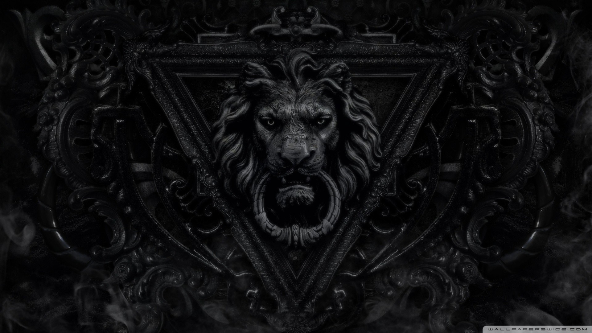 black lion hd wallpaper (64+ images)