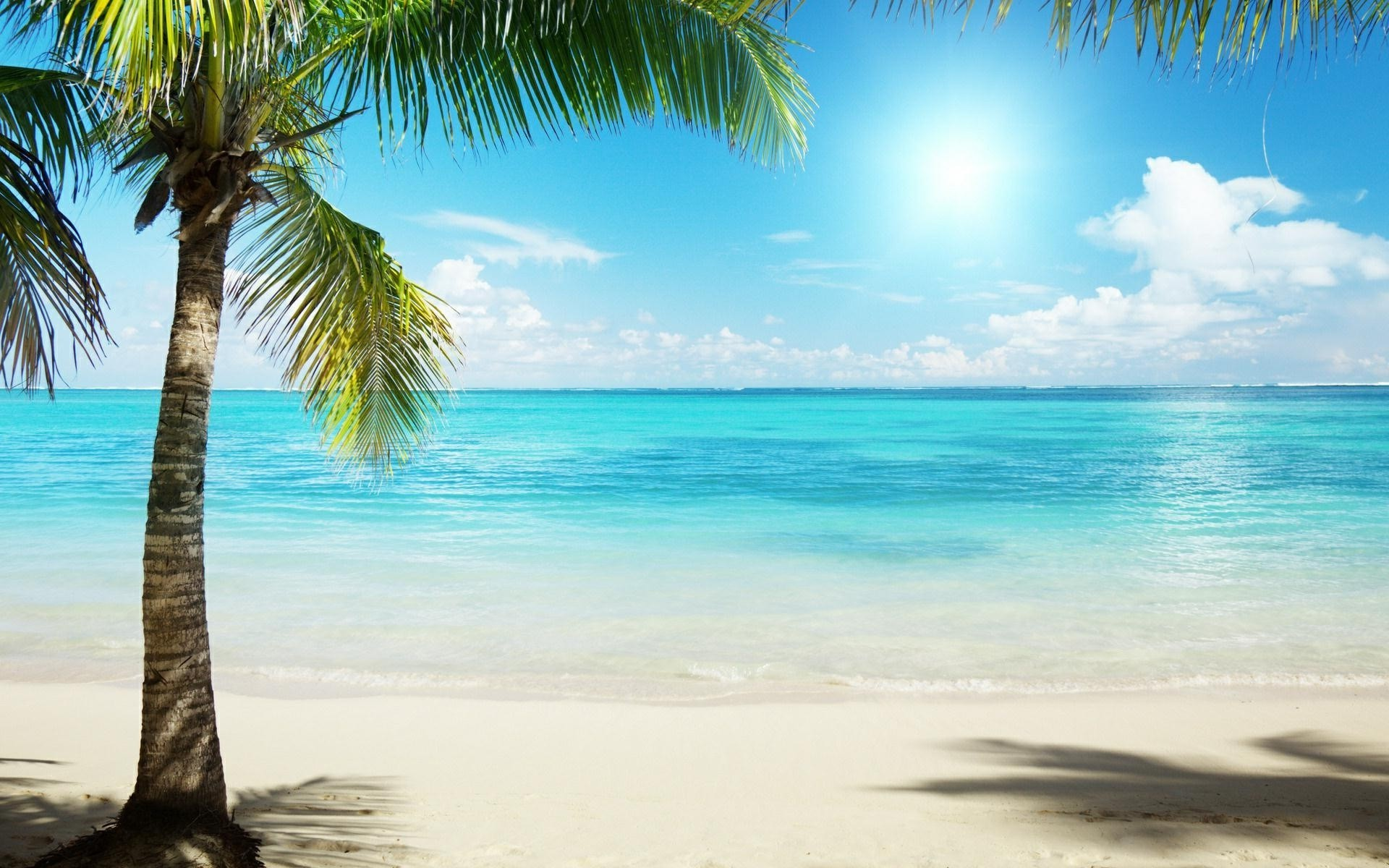 1920x1200 Tropical Beach Background wallpaper |  | #6783