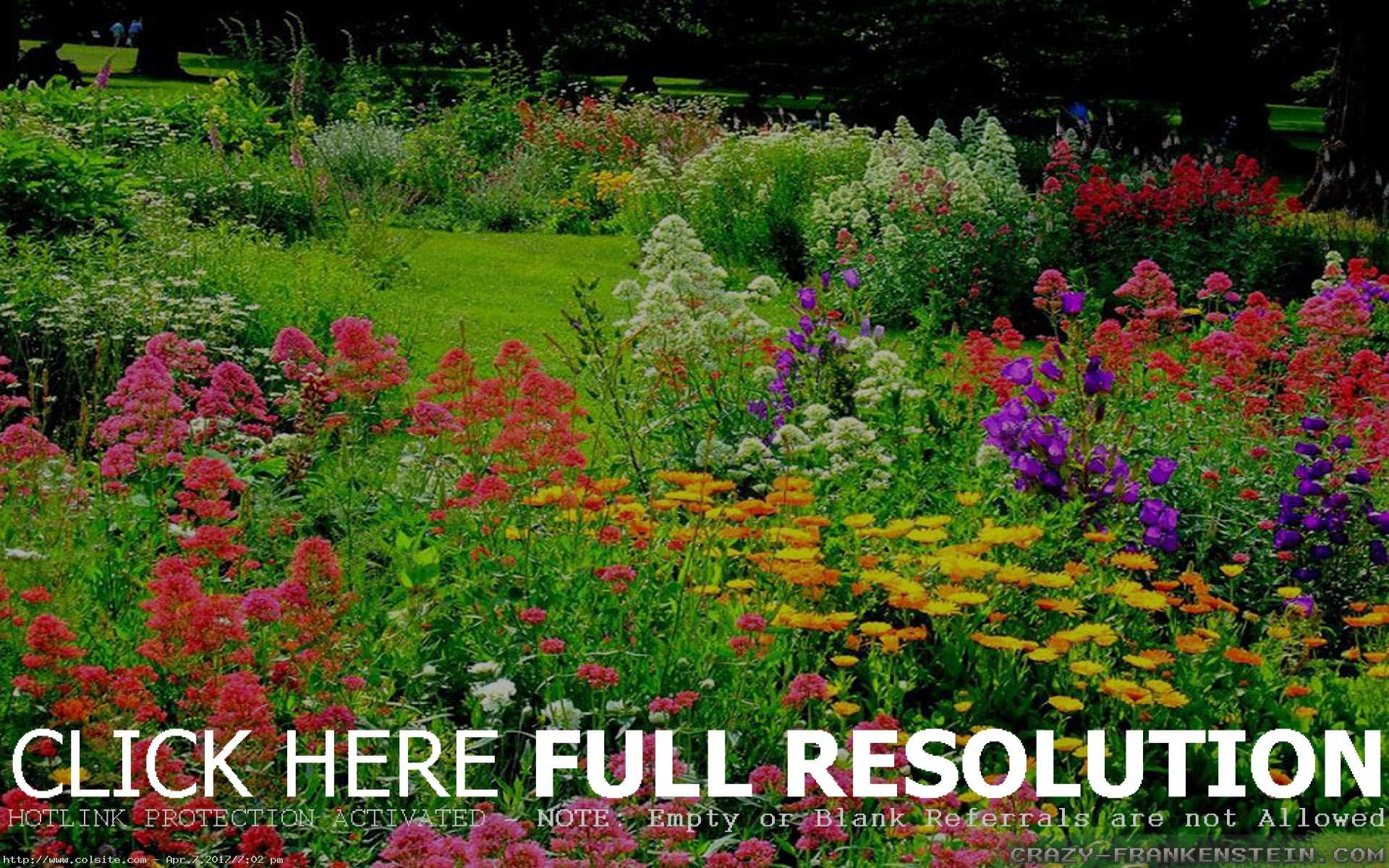1920x1200 colorful beautiful flower garden planting