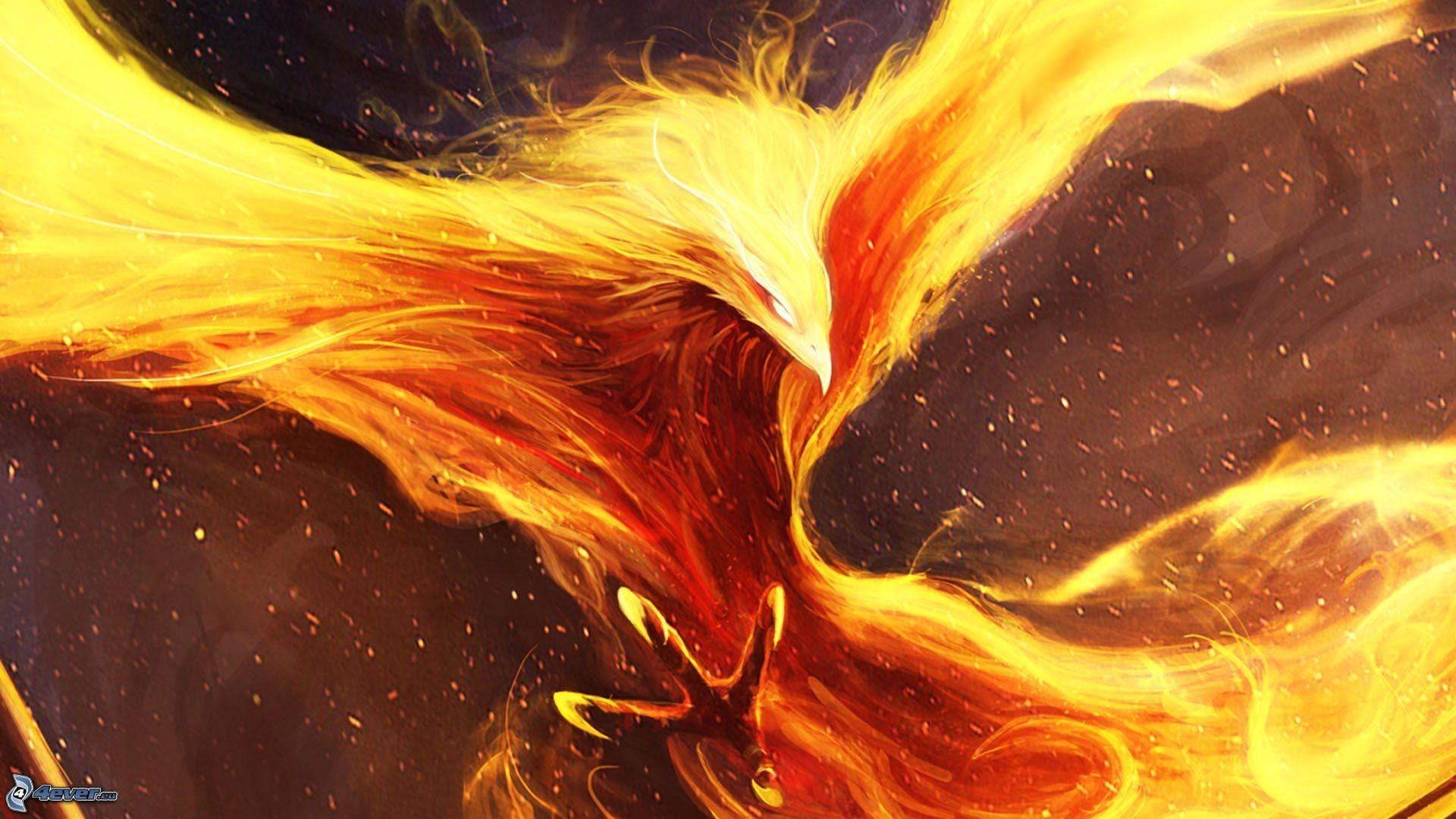 Phoenix Bird Wallpaper 65 Images