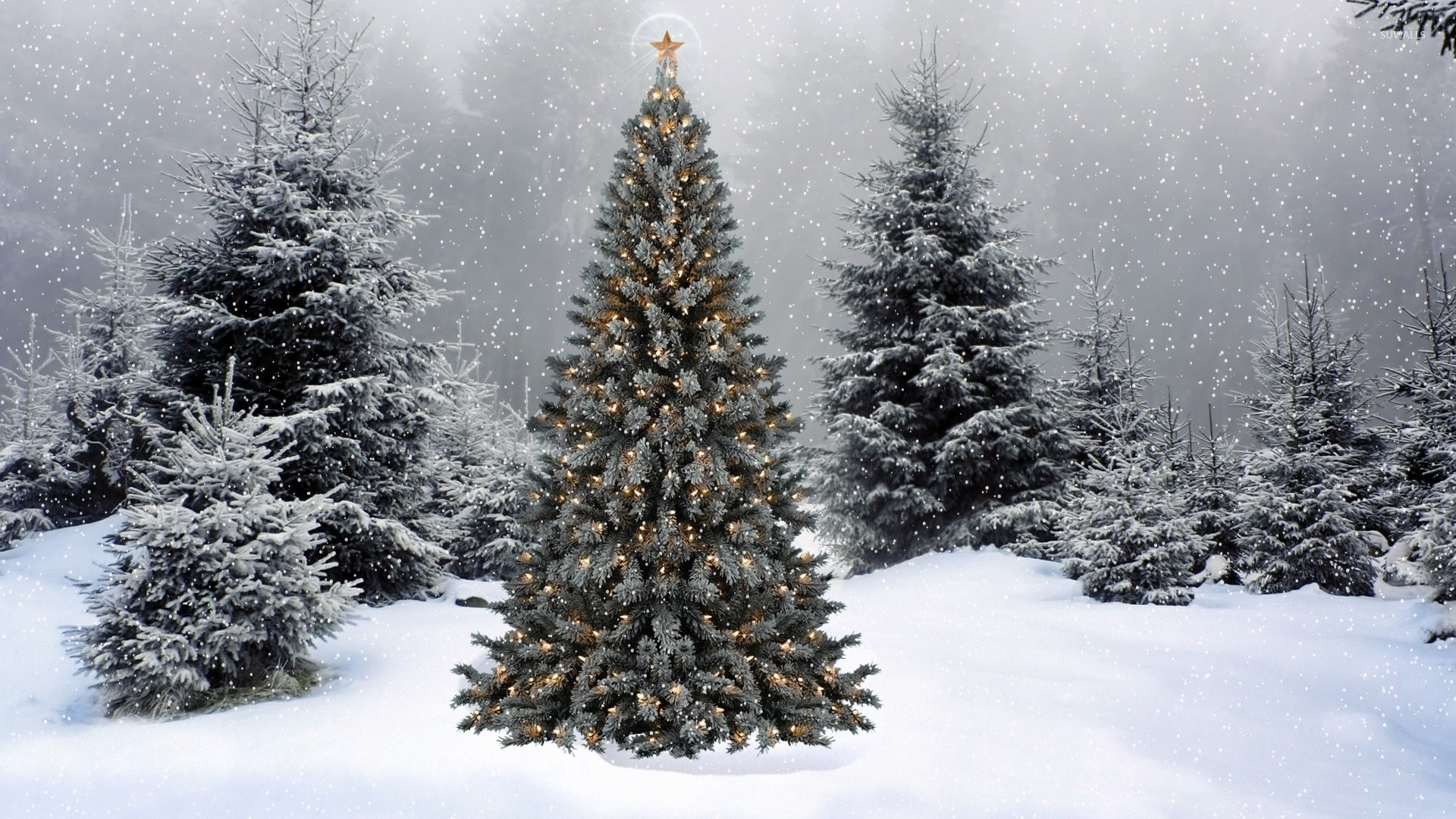 1920x1080 Snow falling on the Christmas tree wallpaper