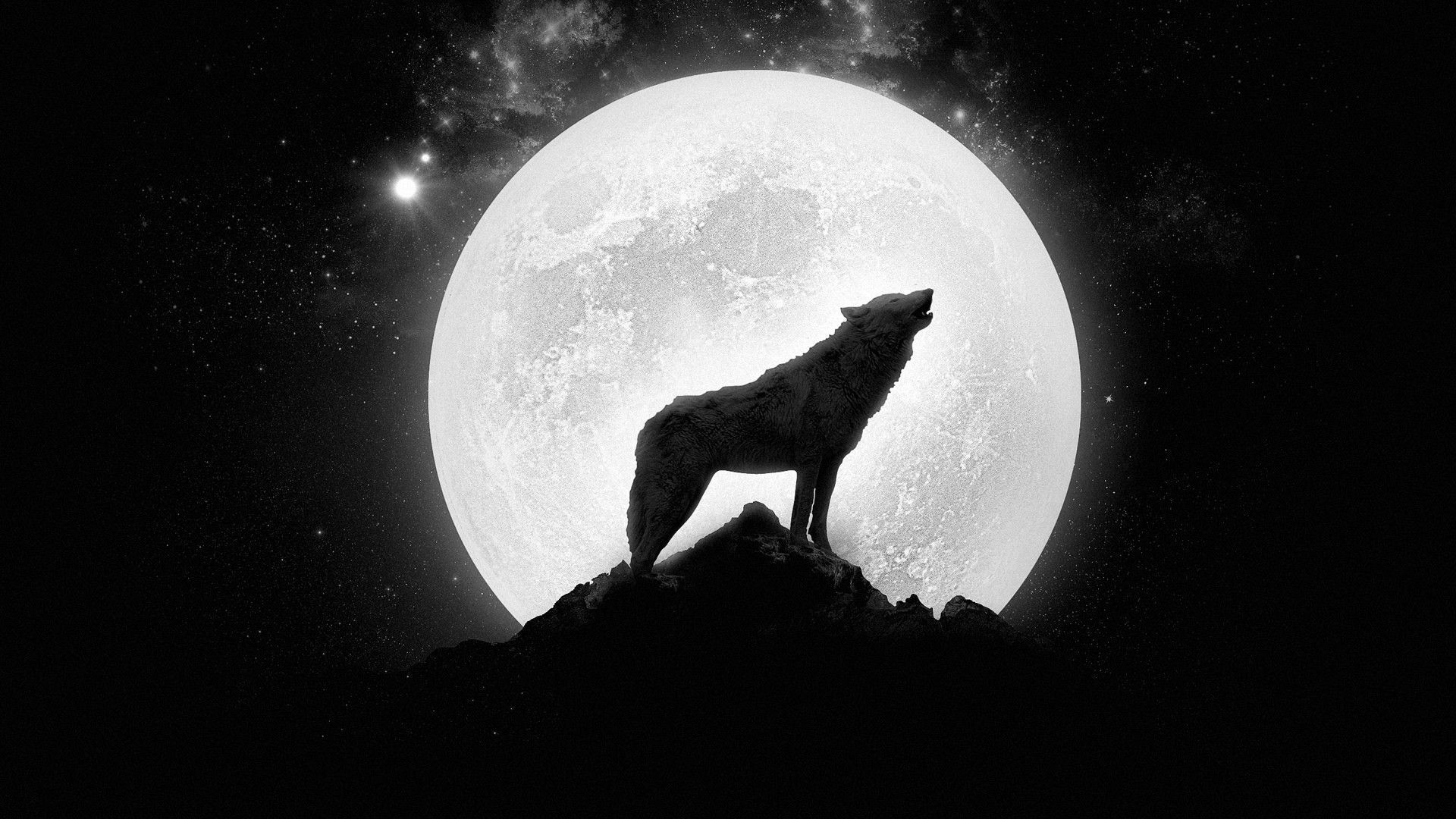 1920x1080 Howling Wolf Wallpaper Hd Resolution