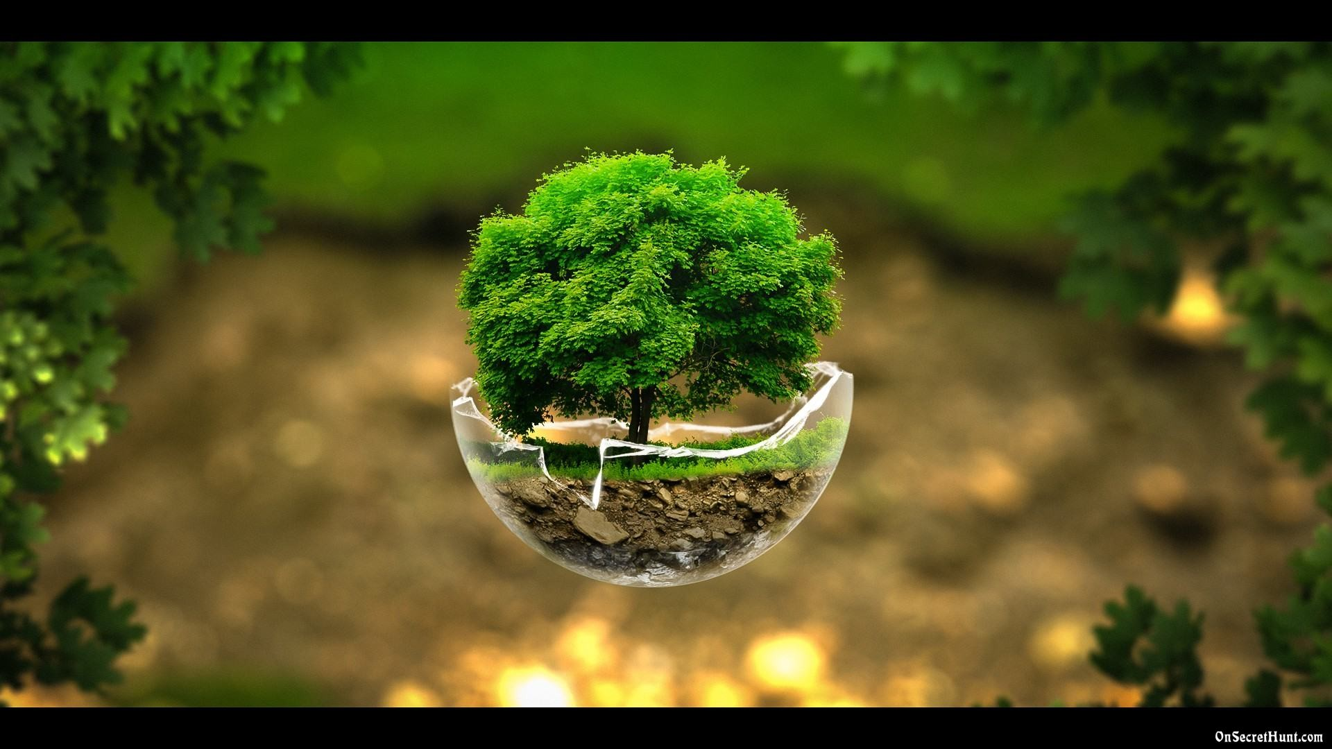 Best Nature Wallpapers Free Download