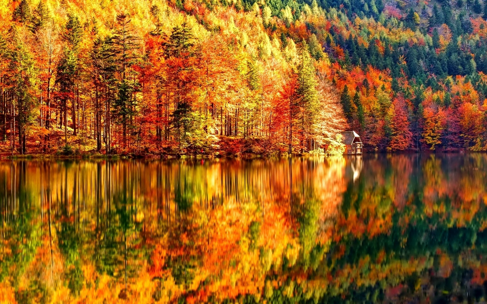 HD Fall Wallpapers (60+ images)