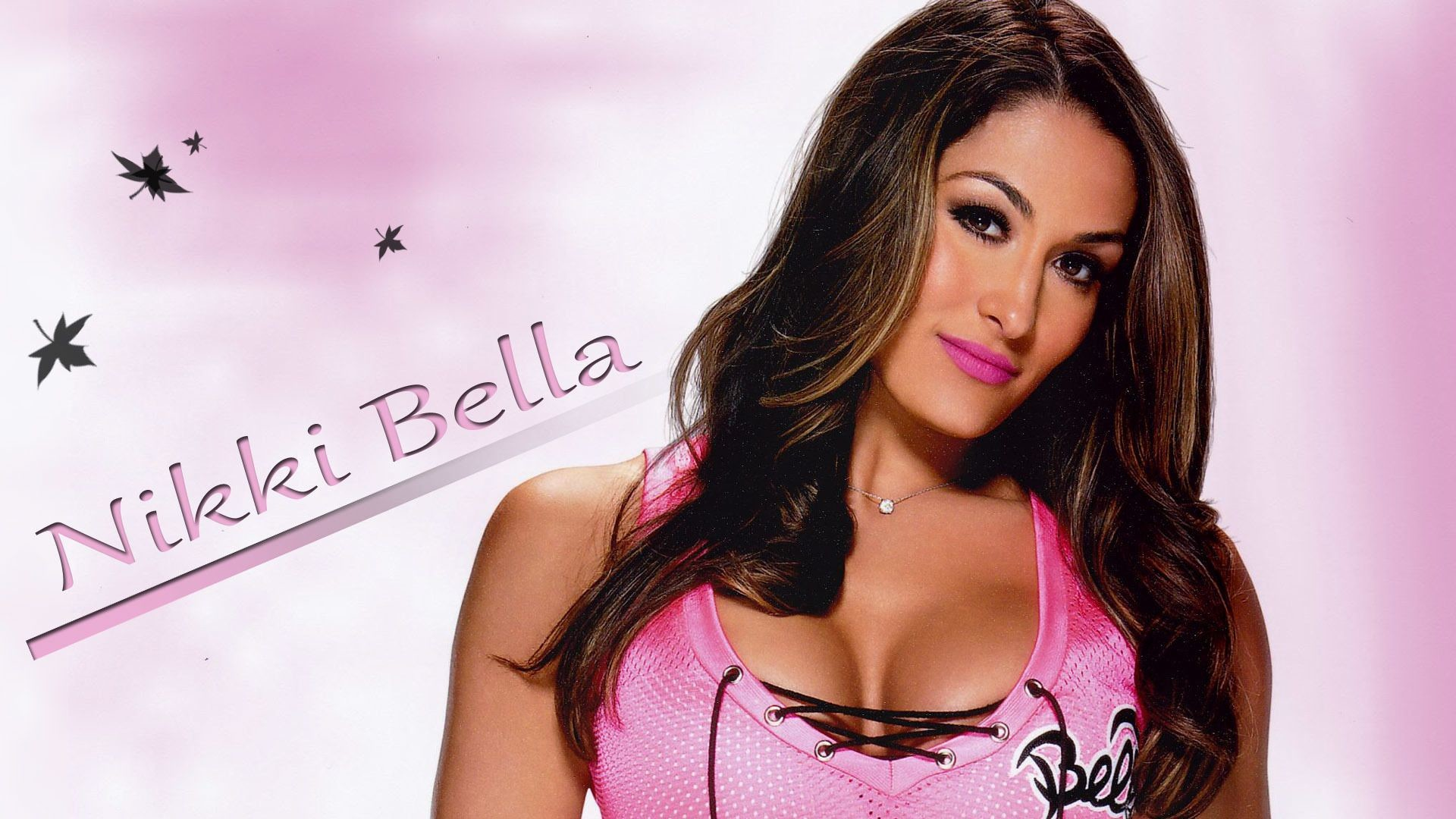 1920x1080 To Download or Set this Free Nikki Bella Wallpapers as the Desktop  Background Image for your Laptop, Macintosh or Personal Computer.