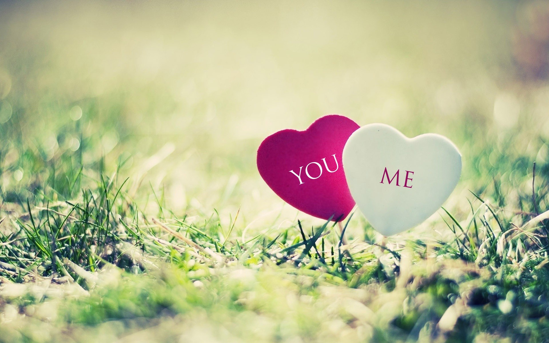 I Love You Wallpaper (60+ Images
