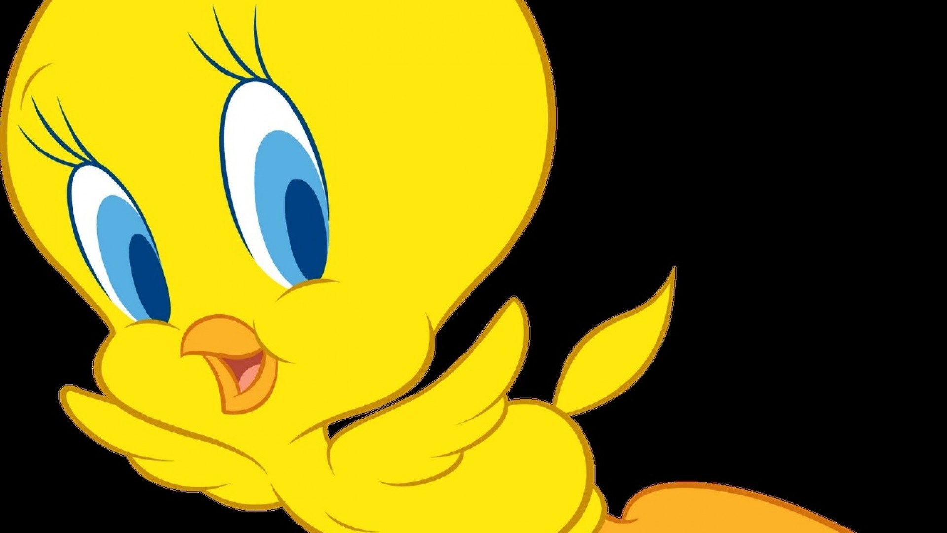 Wallpapers Of Tweety 65 Images