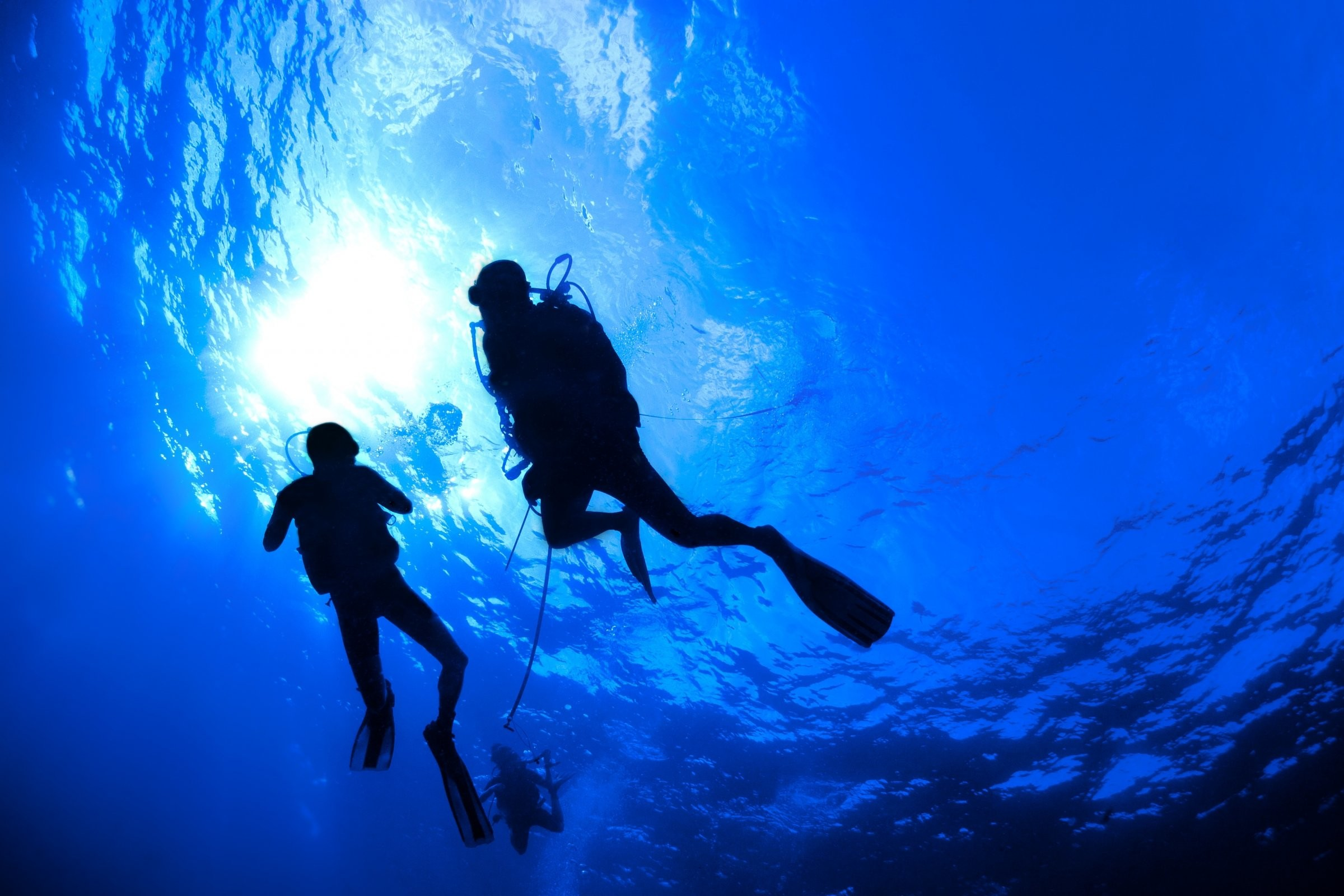 2400x1600 Scuba diving diver ocean sea underwater wallpaper |  | 332477 |  WallpaperUP