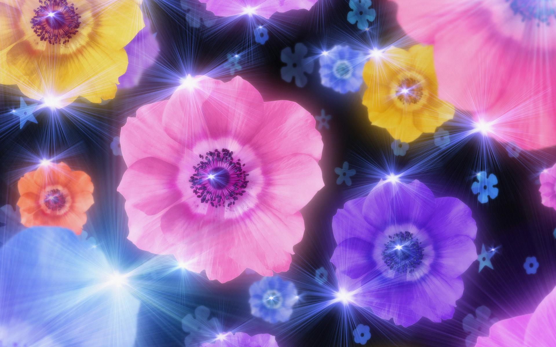1920x1200 animated, wallpaper, mobile, flower, background, image, wallpapers