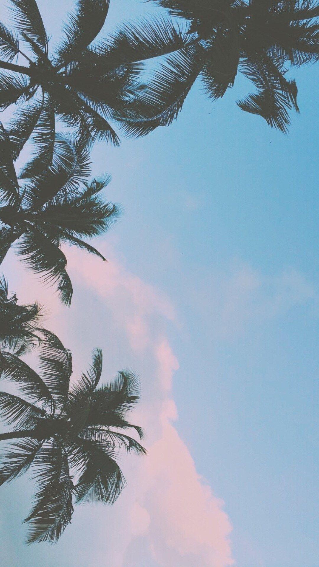 Cute Summer Wallpaper (59+ Images