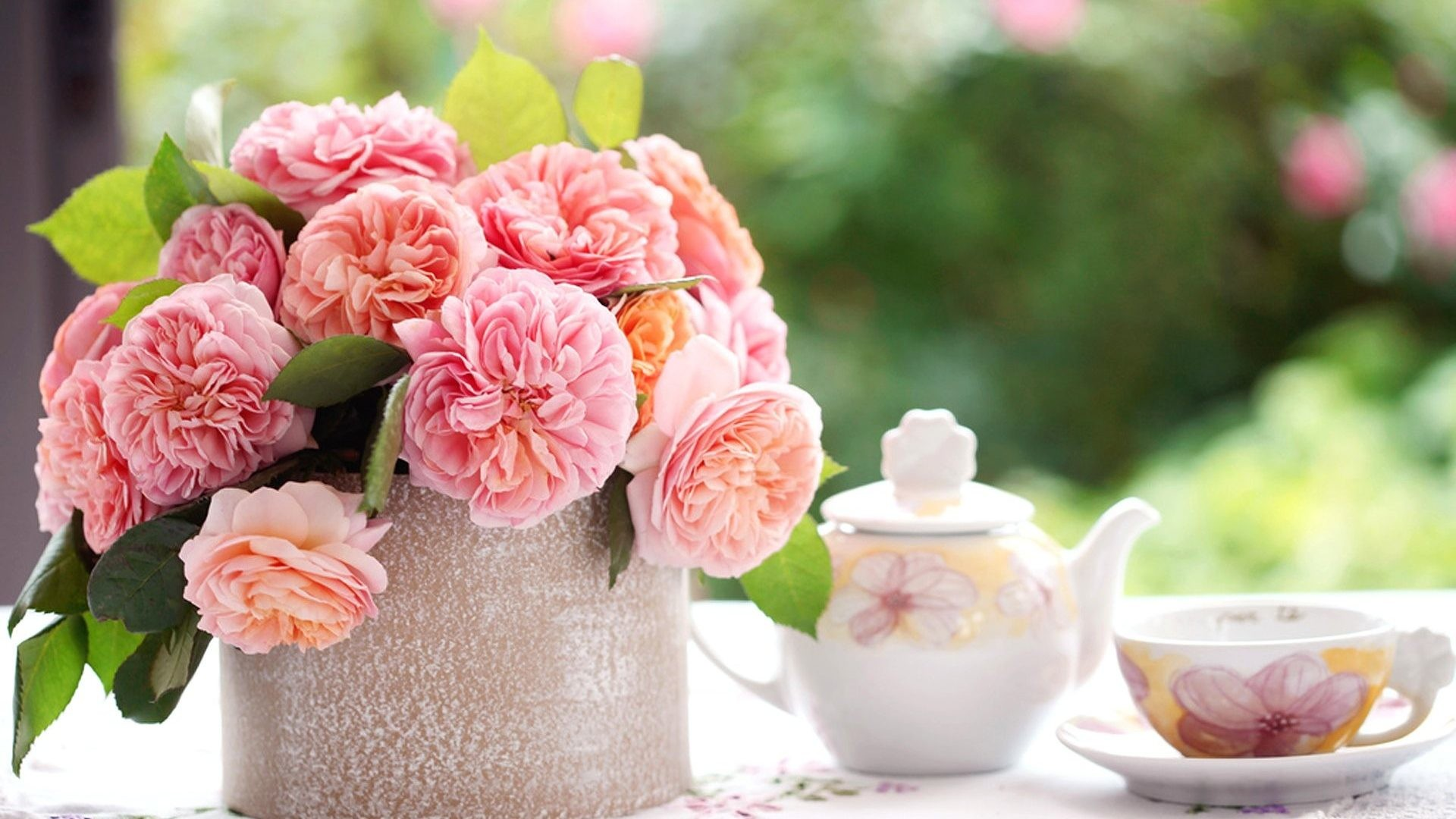 1920x1080 Flowers - Bokeh Blurring Pink Teapot Morning Flower Rose Photo Of  Background Images Nature for HD