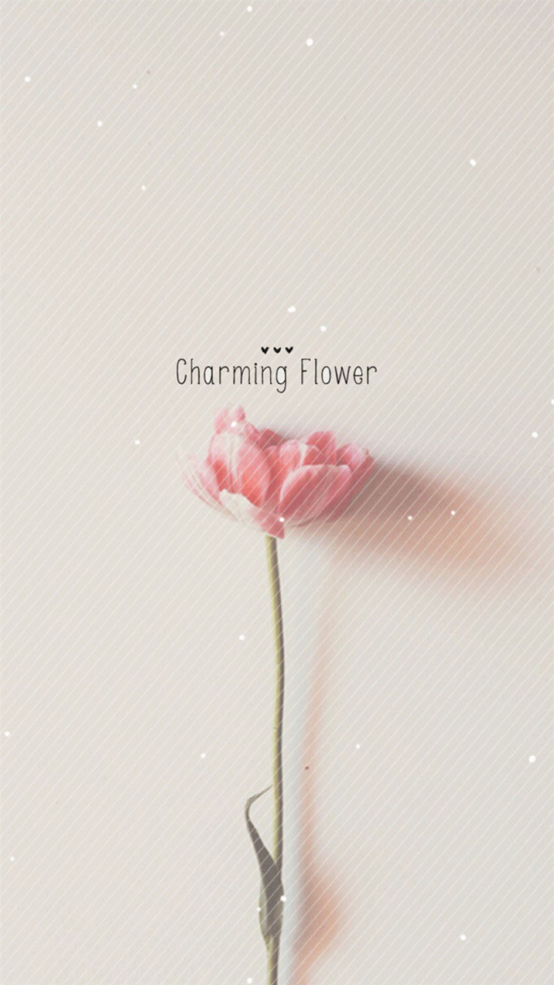 1080x1920 Flower HD Wallpaper IPhone 6 Plus 391