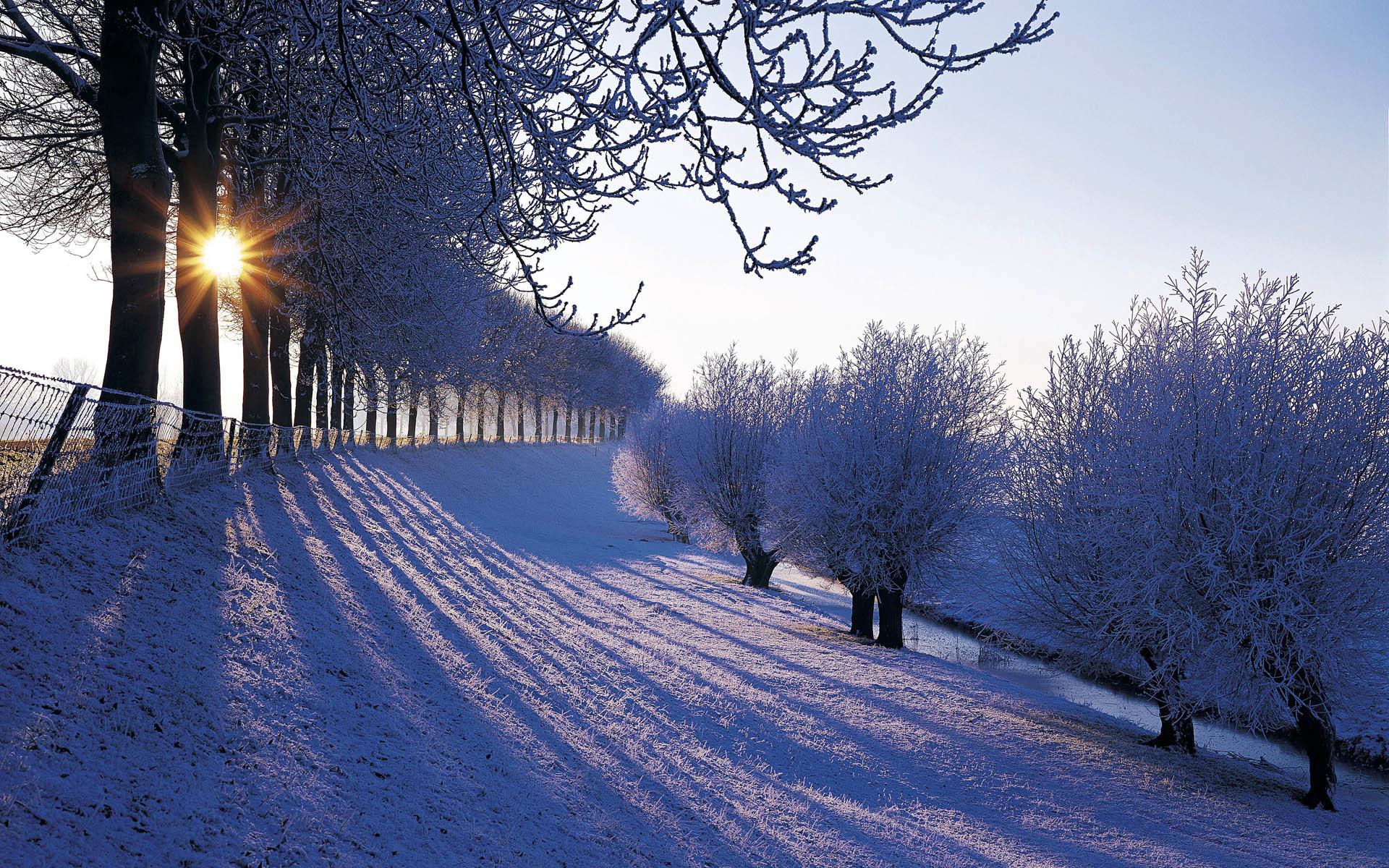 1920x1200 Most Beautiful Snow Scenes Wallpaper