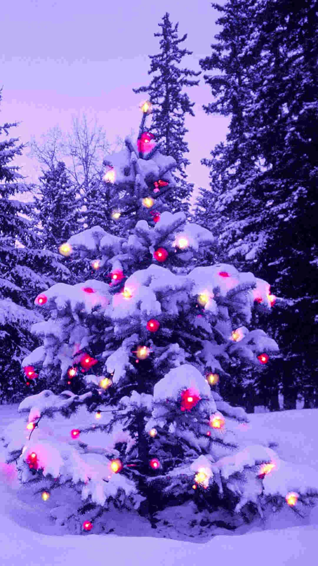 1080x1920 pink light 2014 Christmas tree iPhone 6 plus wallpaper - nature #2014 # Christmas #