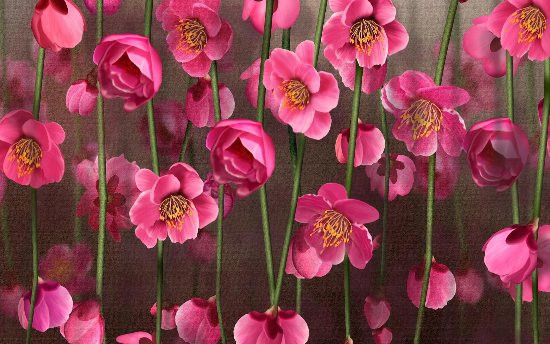 Pink flower wallpaper background 55 images 1920x1200 earth blossom earth vine flower pink flower wallpaper mightylinksfo