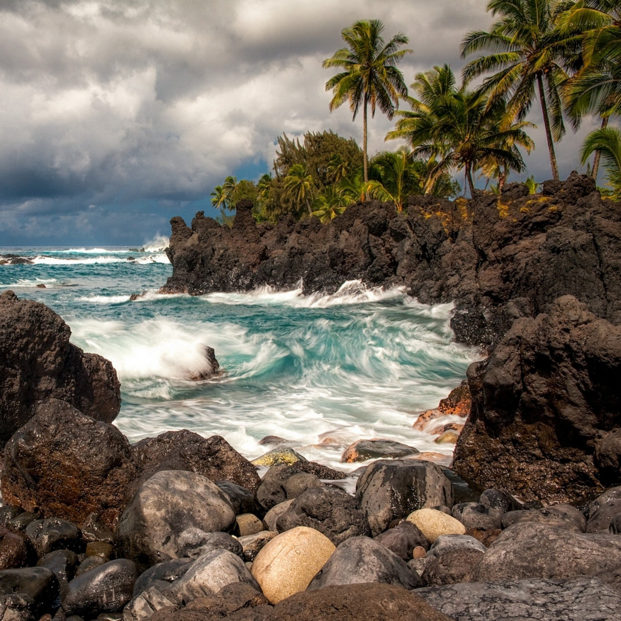 2048x2048 Preview wallpaper maui, hawaii, pacific ocean, cliffs, rocks, surf, palm