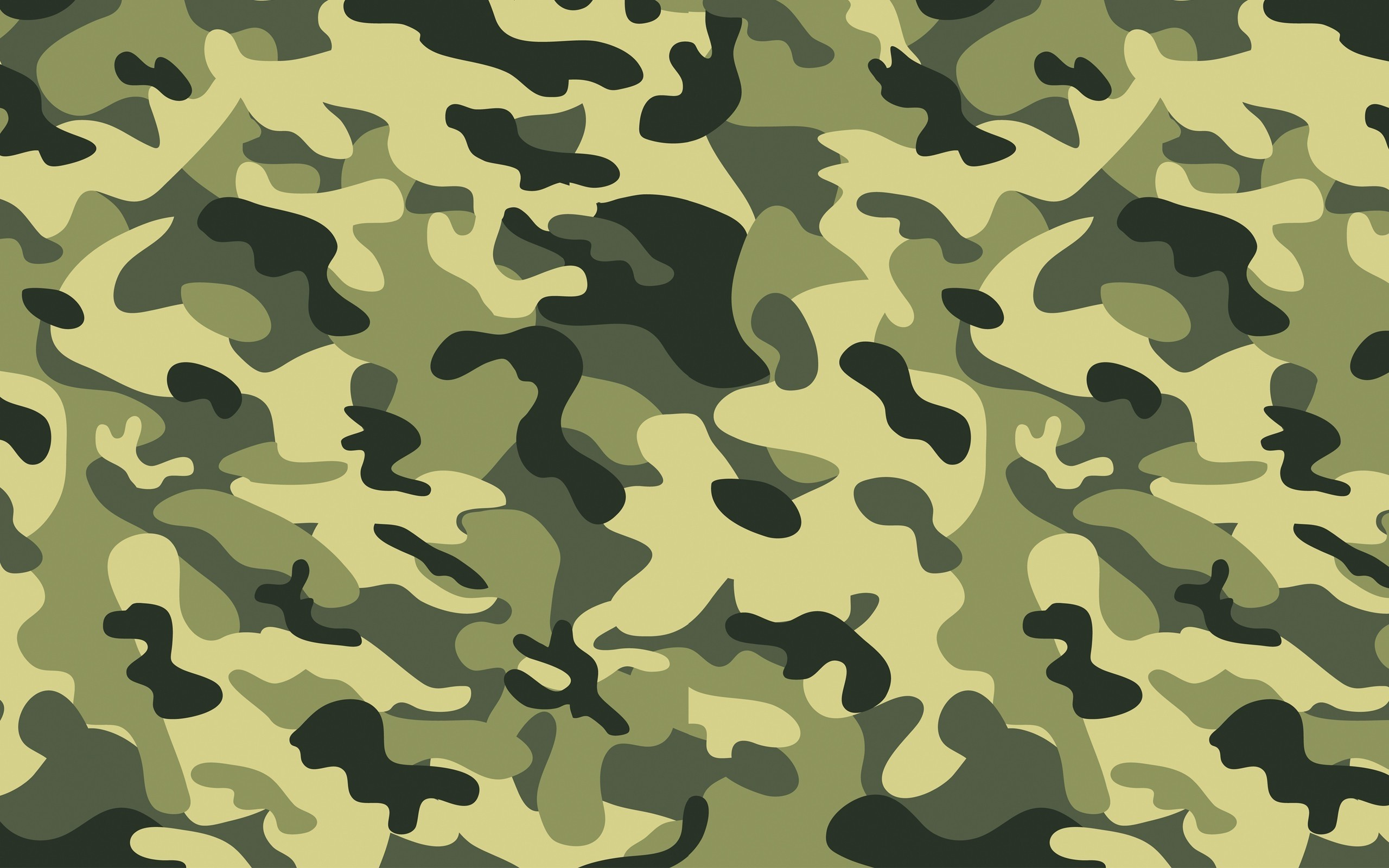 2560x1600 Green Military Camouflage Wallpapers HD
