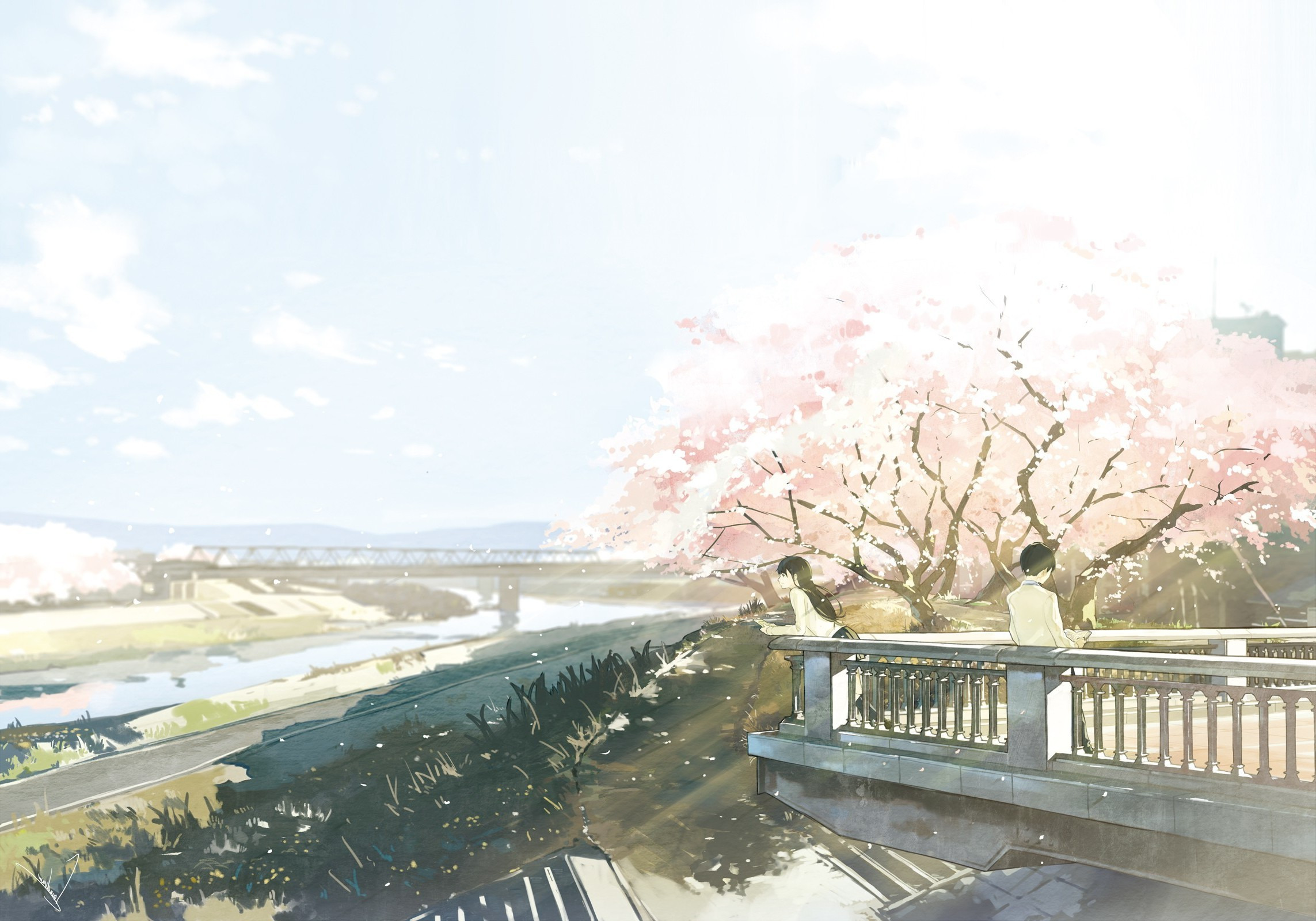 2286x1600 cherry Blossom, River, Bridge, Anime, Original Characters Wallpapers HD /  Desktop and Mobile Backgrounds