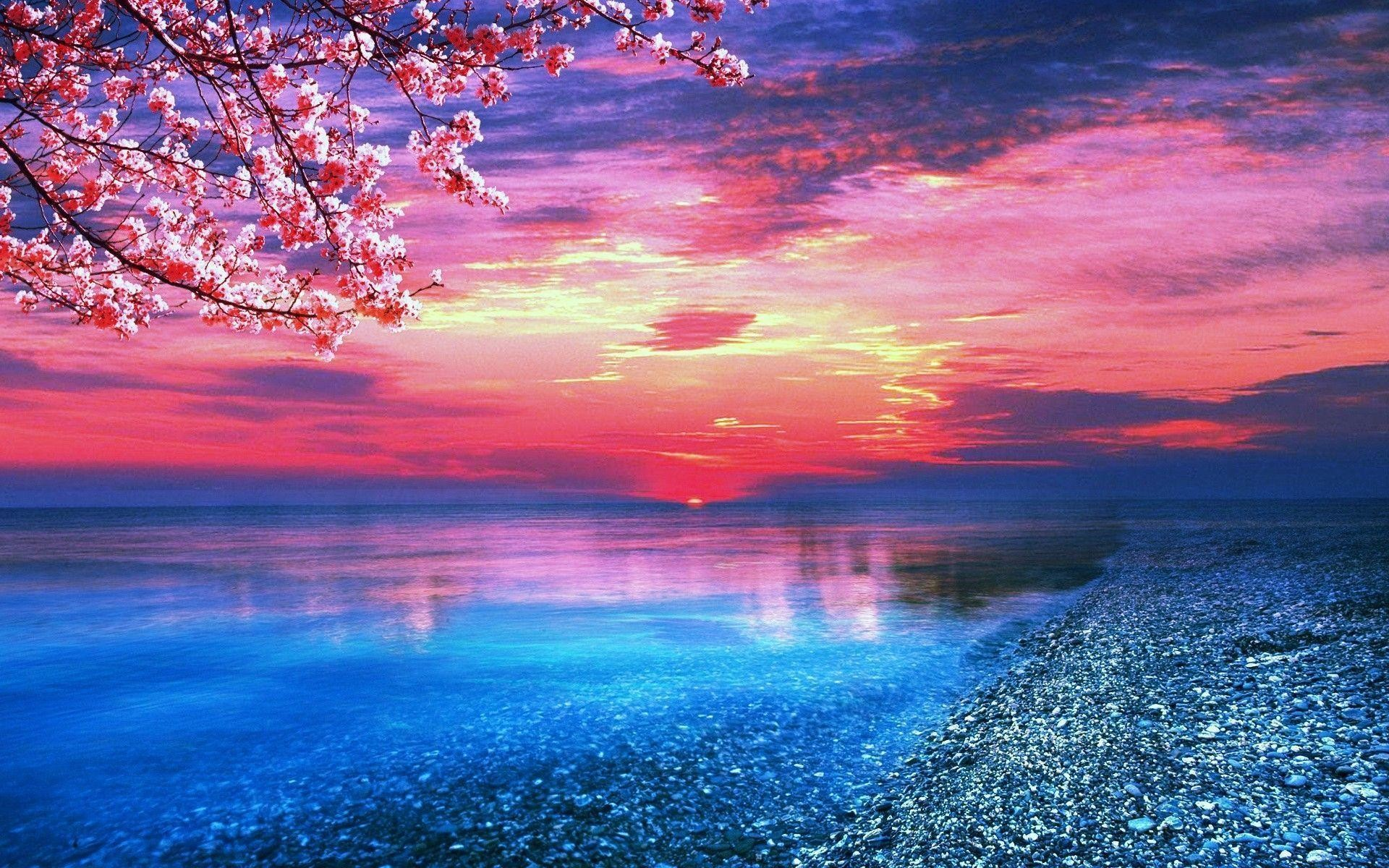 1920x1200 Blue-And-Pink-Nature-Wallpaper .