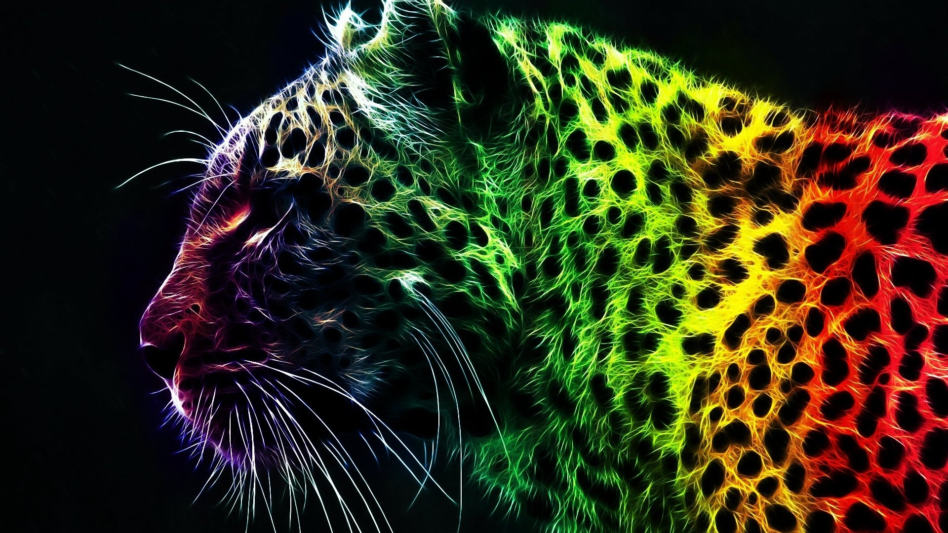 1920x1080 Download Animal Abstract Art Hd Wallpaper | Full HD Wallpapers
