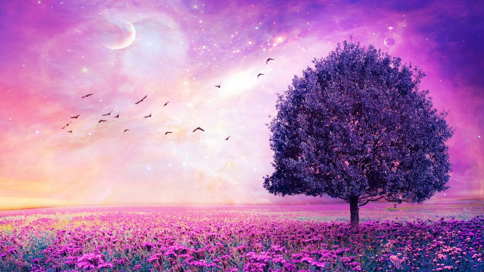 1920x1080 Purple-Flower-Wallpaper-Free-Download-For-Desktop