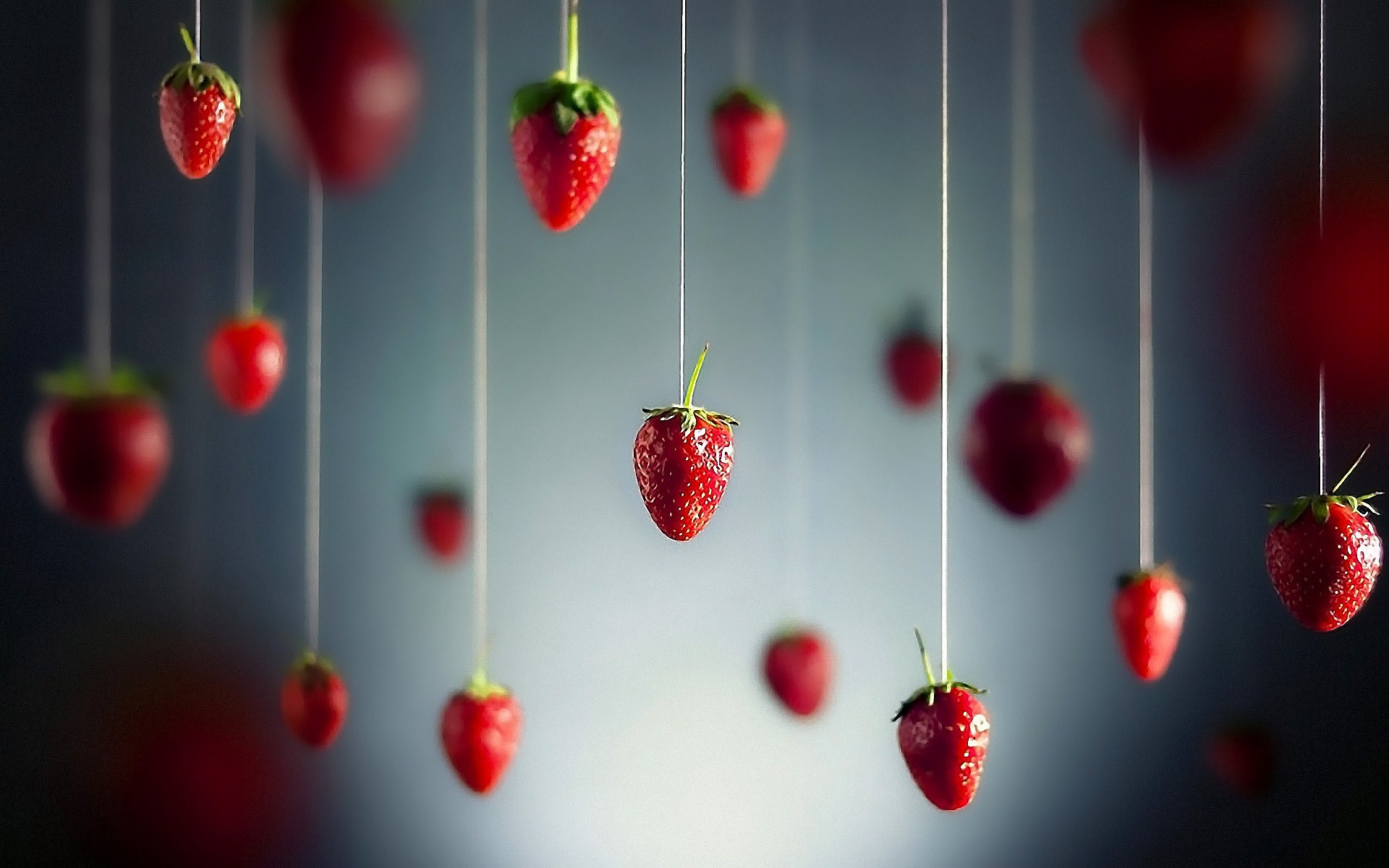 1920x1200 Minimalistic fruits hanging strawberries wallpaper |  | 15405 |  WallpaperUP