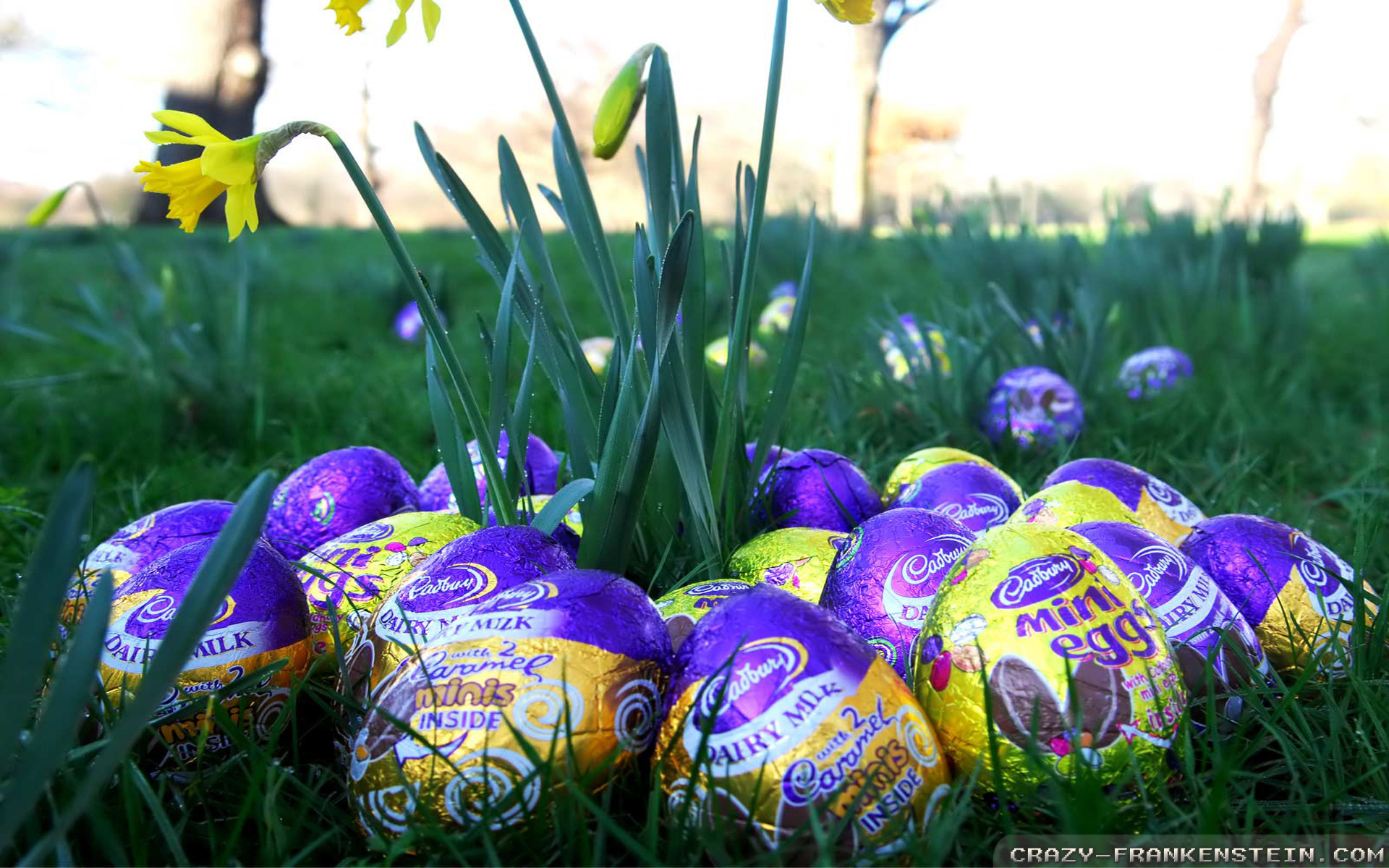 Easter Wallpapers Hd Download Free Colletion 60: Easter Eggs Wallpaper (70+ Images