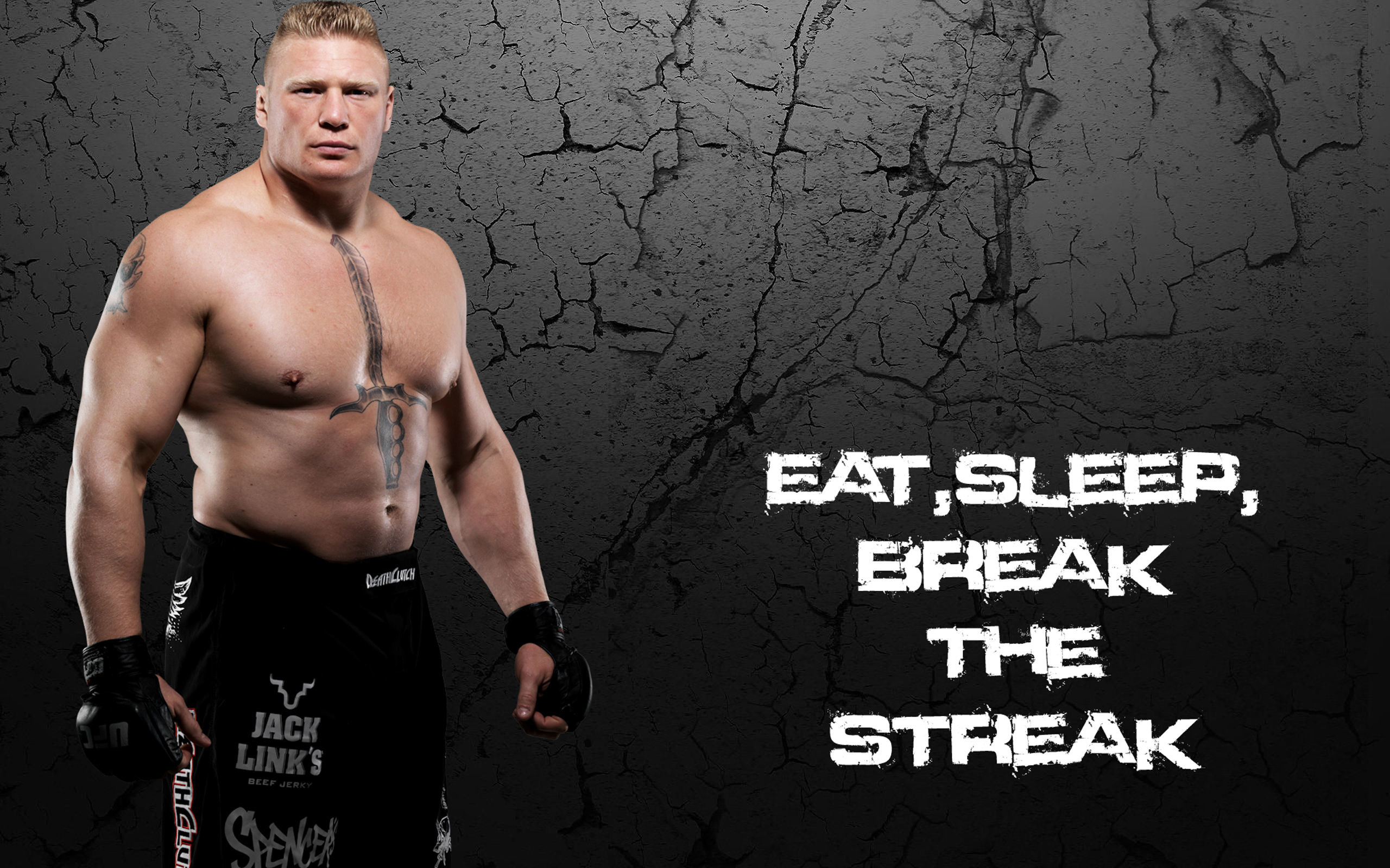 2560x1600 Brock Lesnar HD Wallpapers
