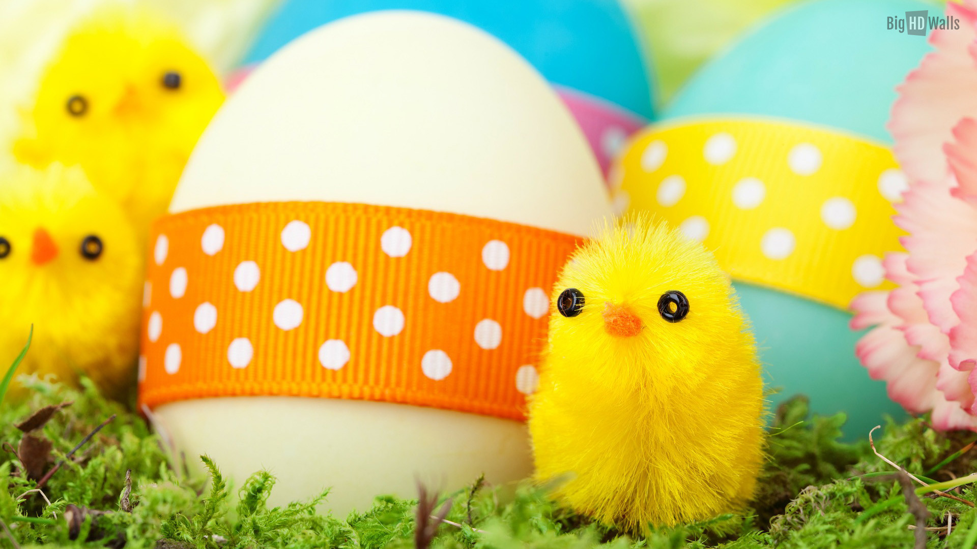 1920x1080 Colorful Easter eggs hd wallpaper