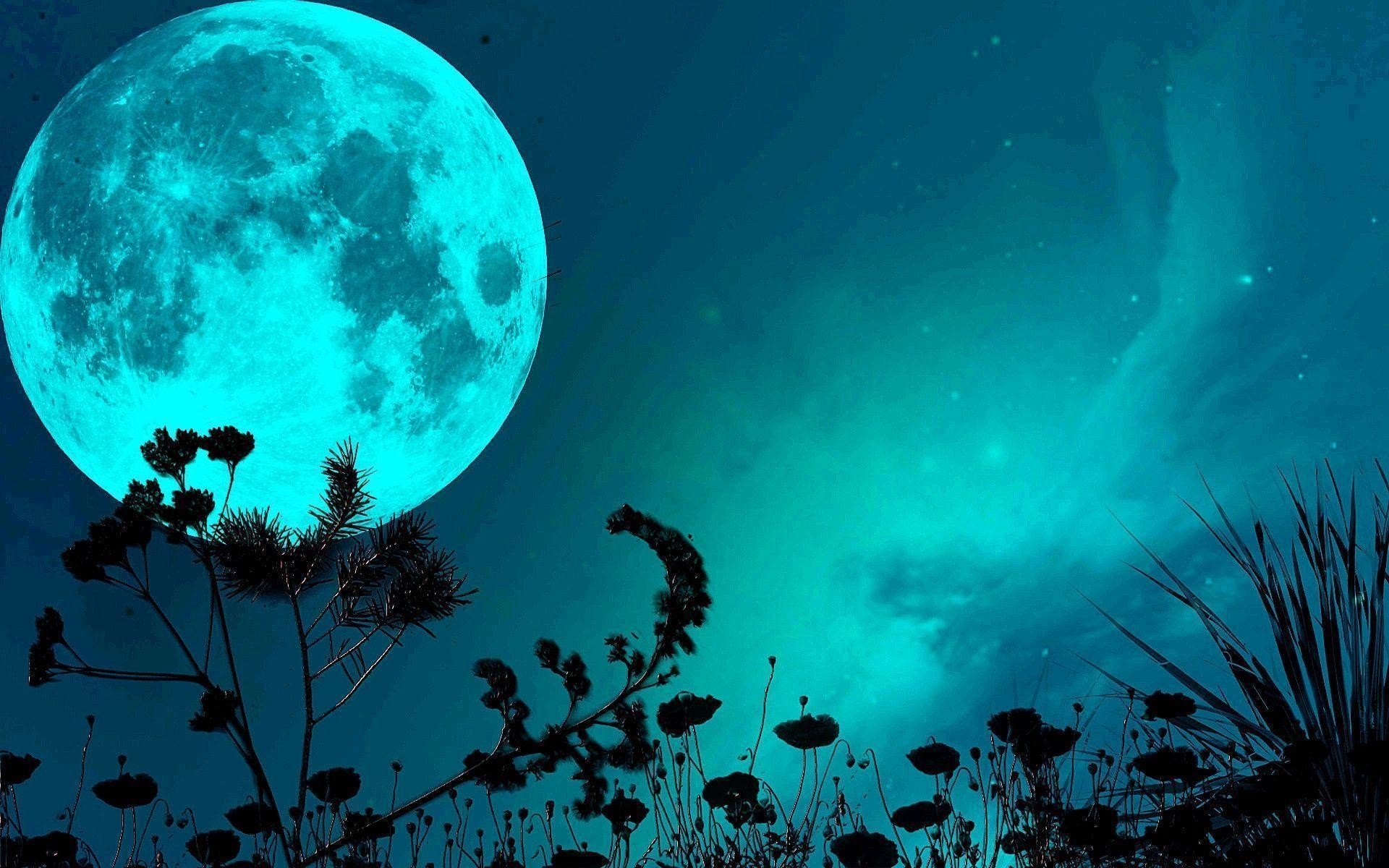 1920x1200 Blue Moon wallpapers (69 Wallpapers)