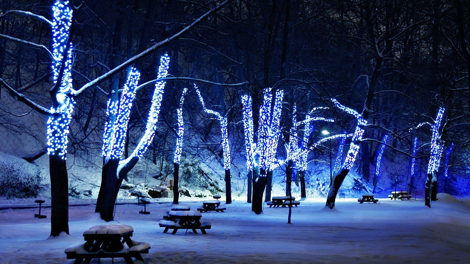 1920x1080 Christmas-Lights-Wallpapers-HD-Wallpaper 2013