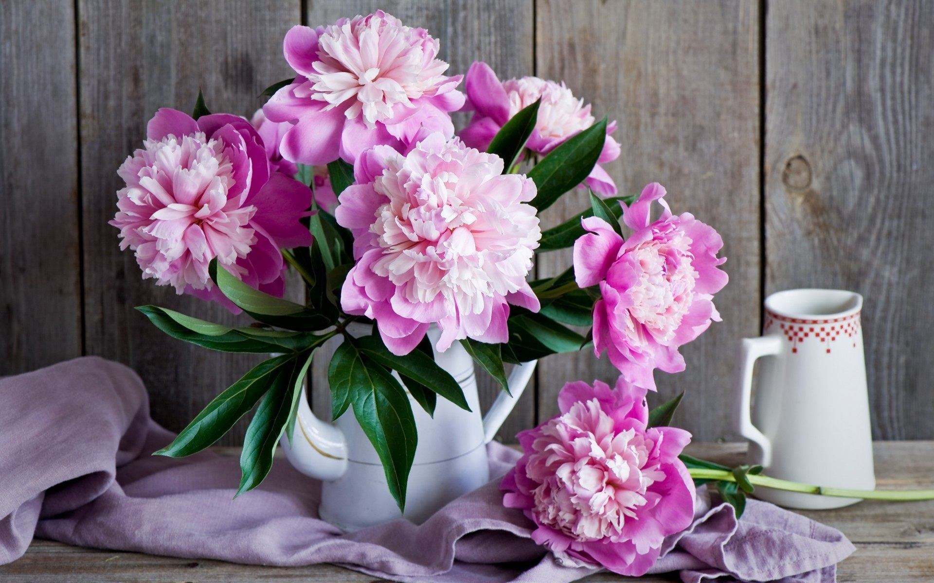 Desktop Wallpaper Peonies 57 Images