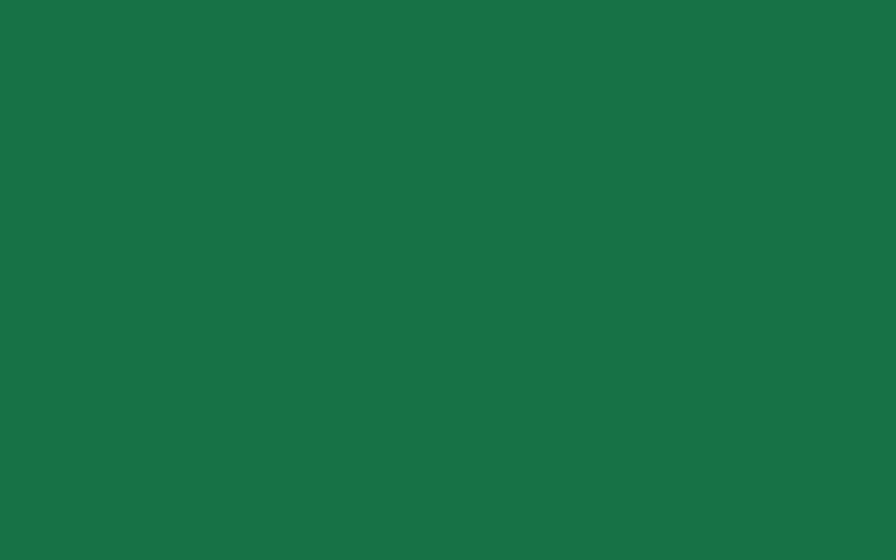 2880x1800  Dark Spring Green Solid Color Background