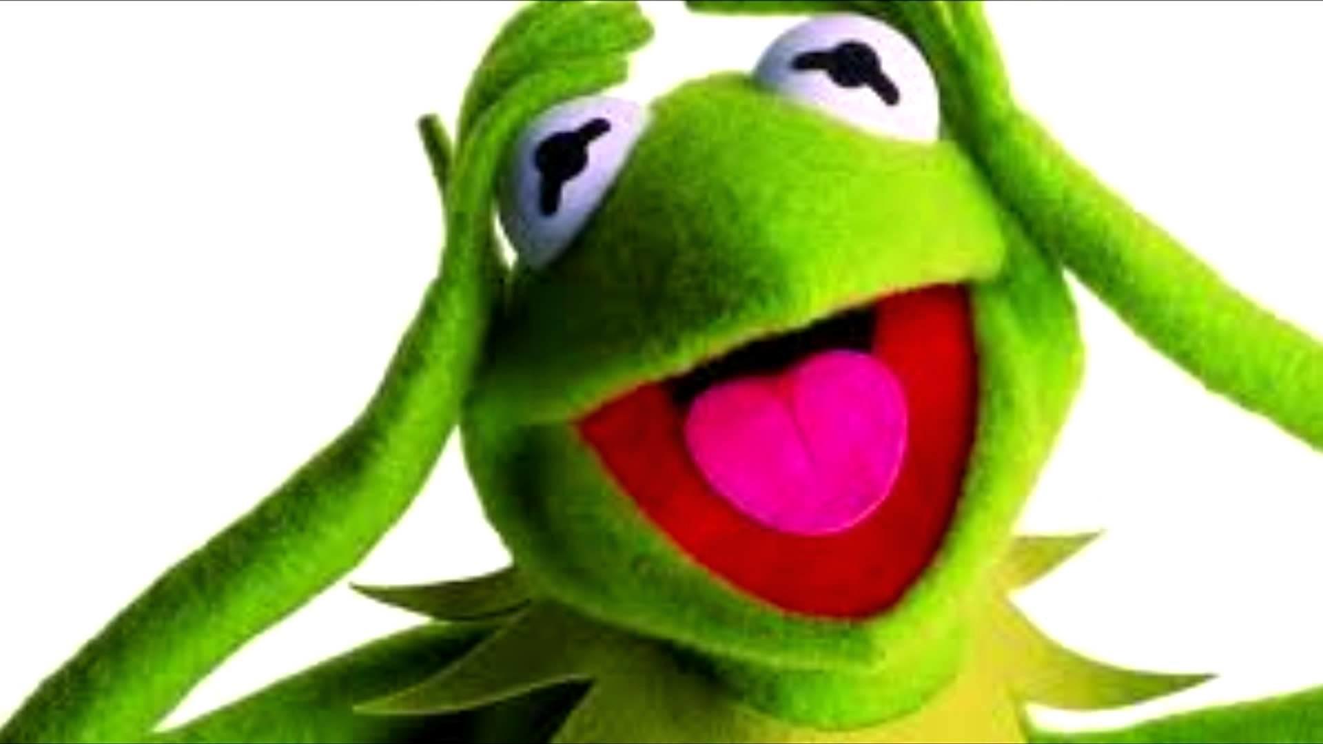 Kermit The Frog Wallpaper 53 Images