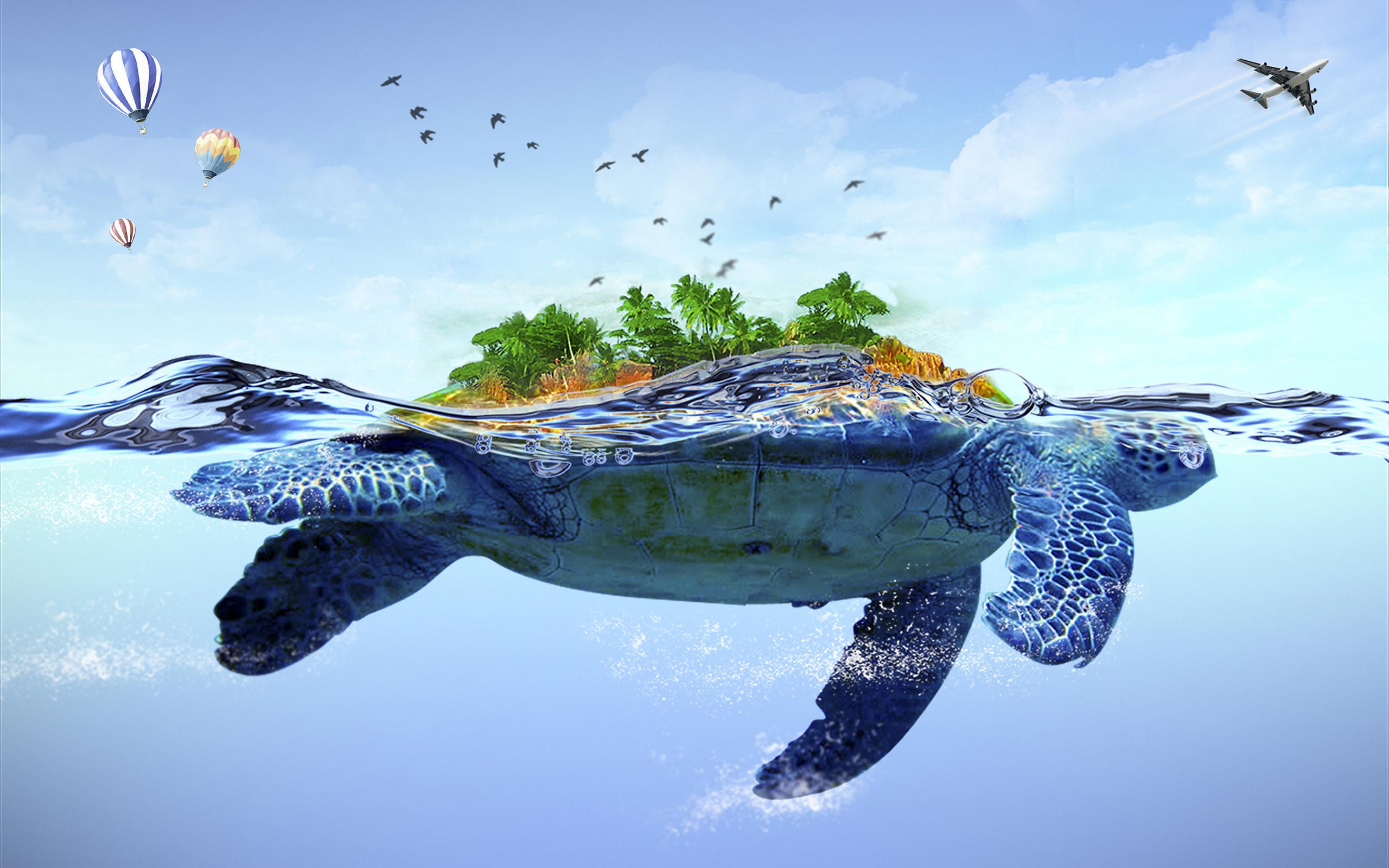 Sea Turtles Desktop Wallpaper (60+ images)