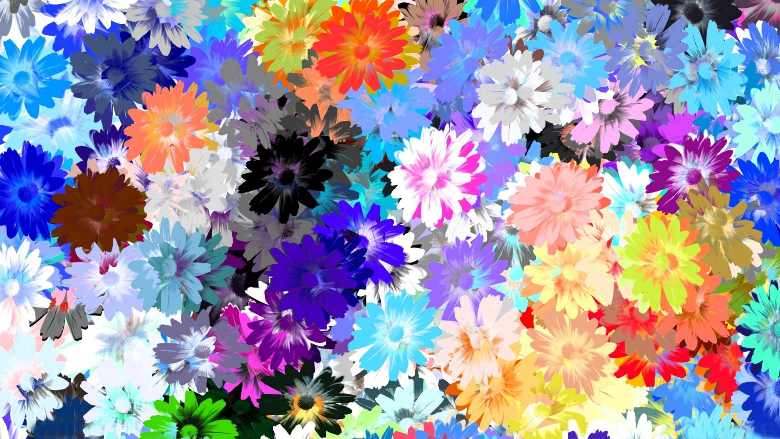 2560x1440  Wallpaper flowers, colorful, drawing, oil
