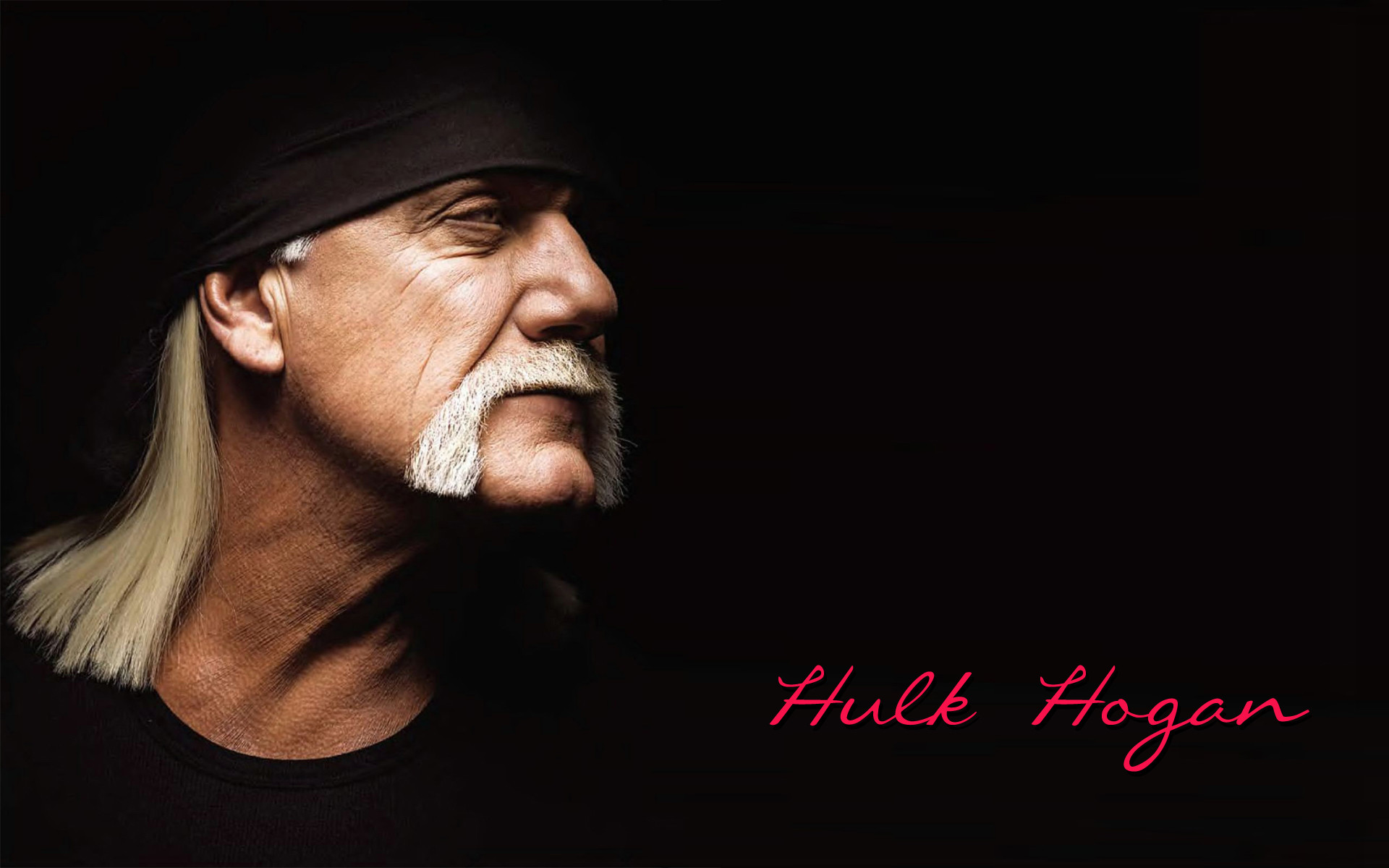 1920x1200 Hulk Hogan wallpaper | WWE wallpaper | Pinterest | Hulk hogan, Hulk and  Wallpaper