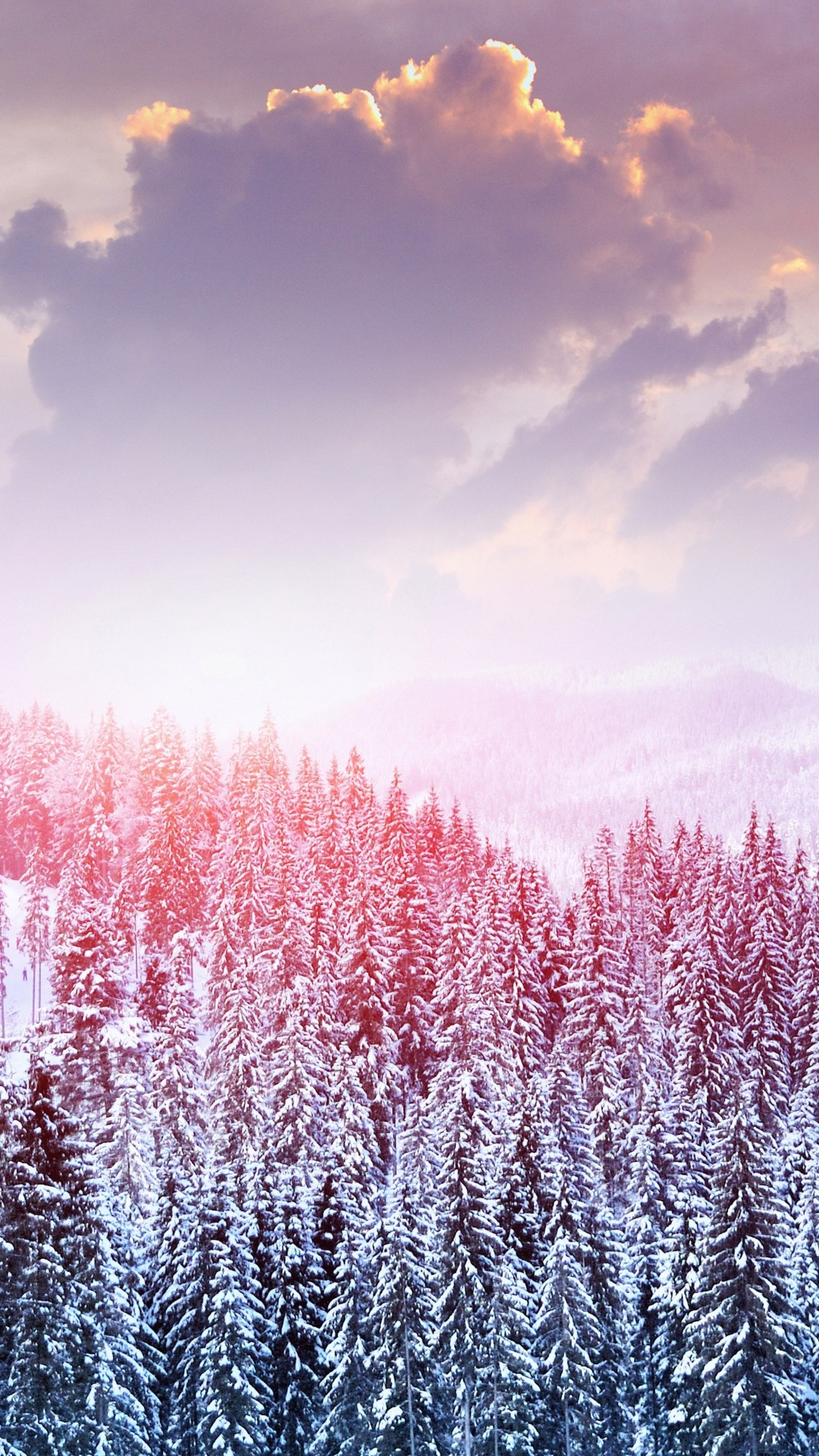 1080x1920 Winter IPhone Wallpaper