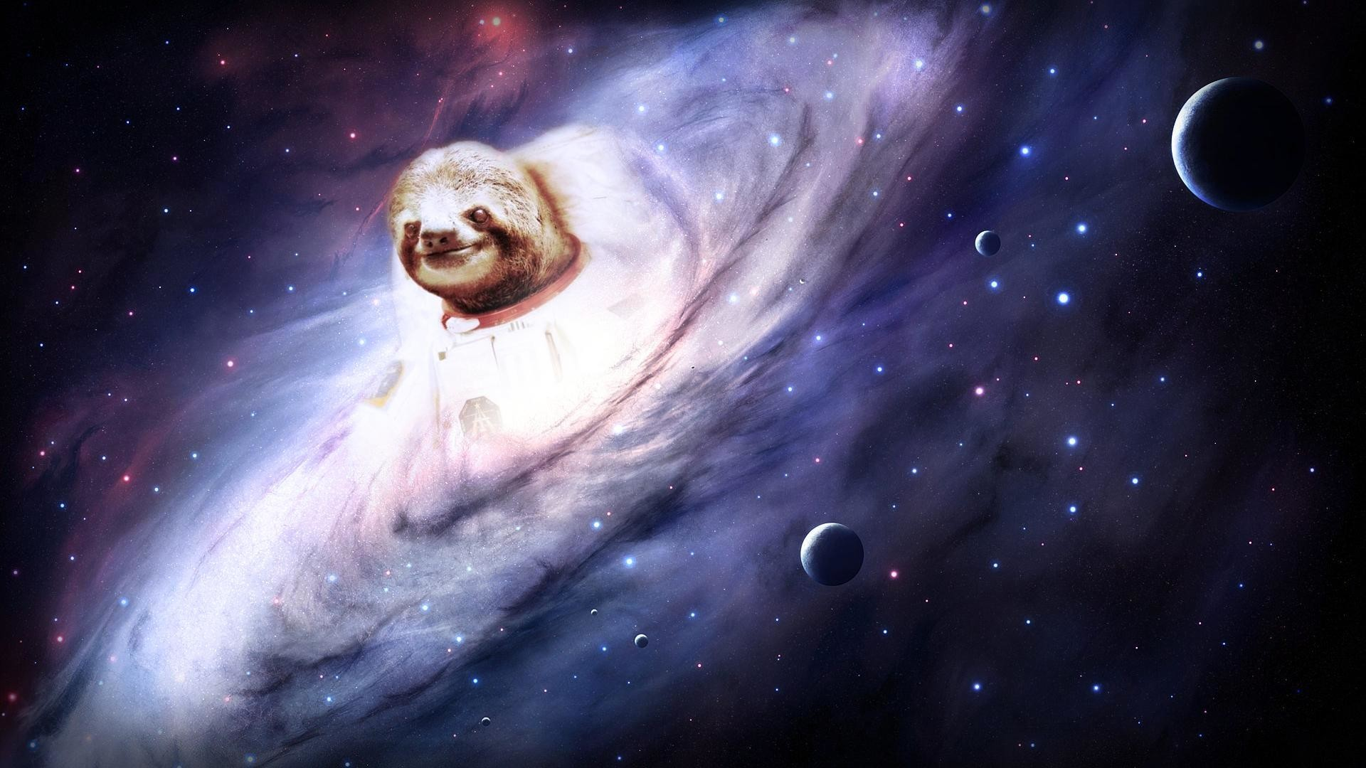 1920x1080 Res: 1920x1200, Cool sloth astronaut wallpaper/meme