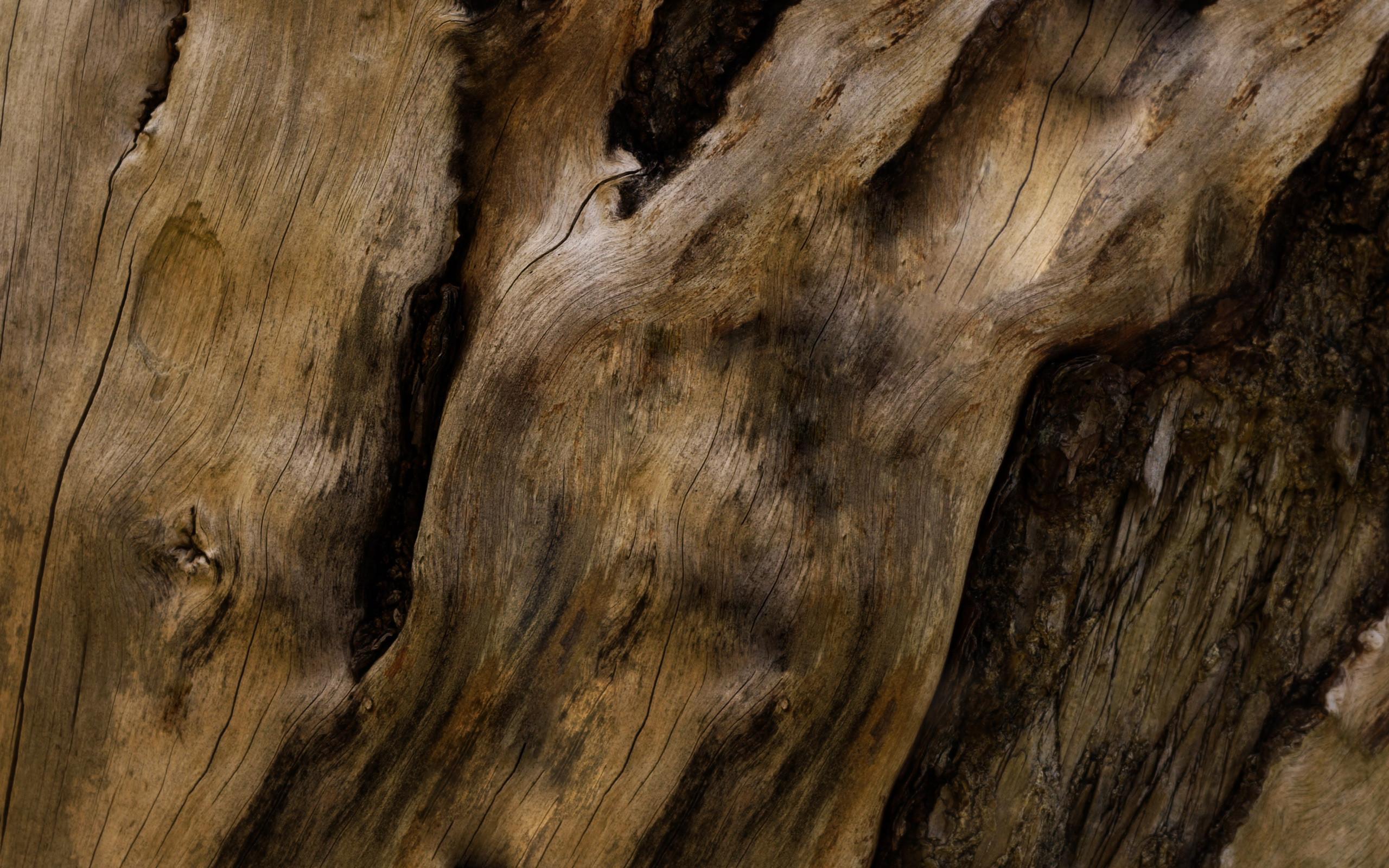 Wood Grain Desktop Wallpaper (51+ images)