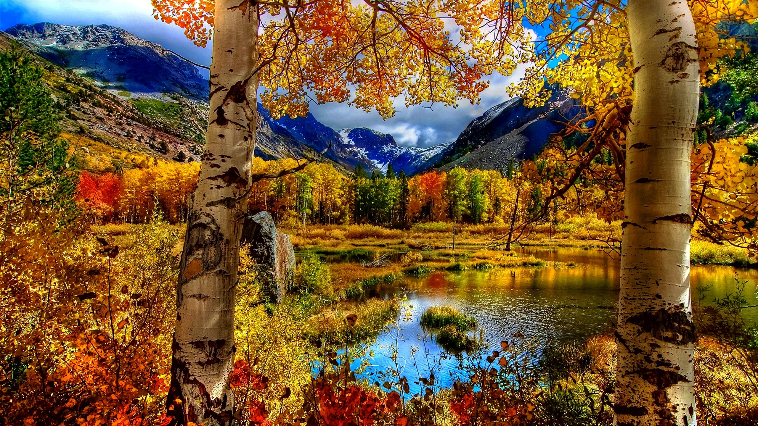 Fall Computer Backgrounds (76+ images)