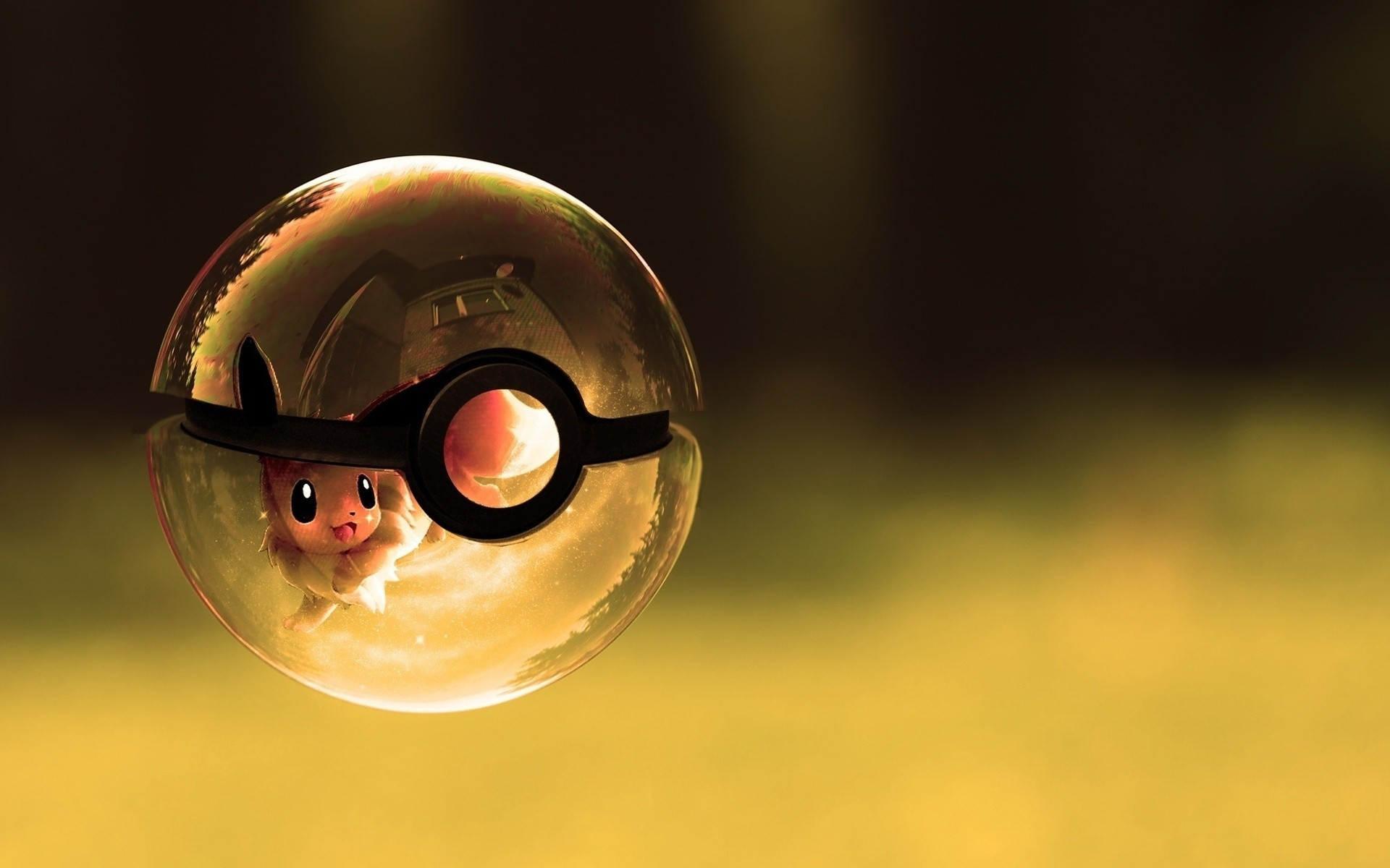 1920x1200 Pokemon poke balls eevee artwork wallpaper |  | 8559 .