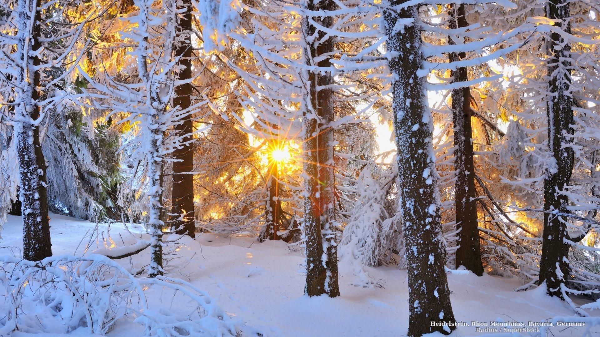 Christmas Scene Screensaver Wallpaper: Snowy Scene Wallpaper (49+ Images
