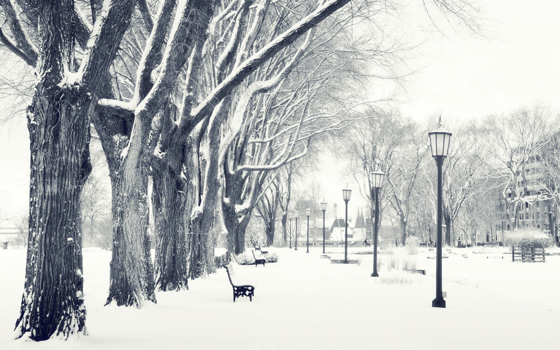 winter in the city wallpaper 70 images