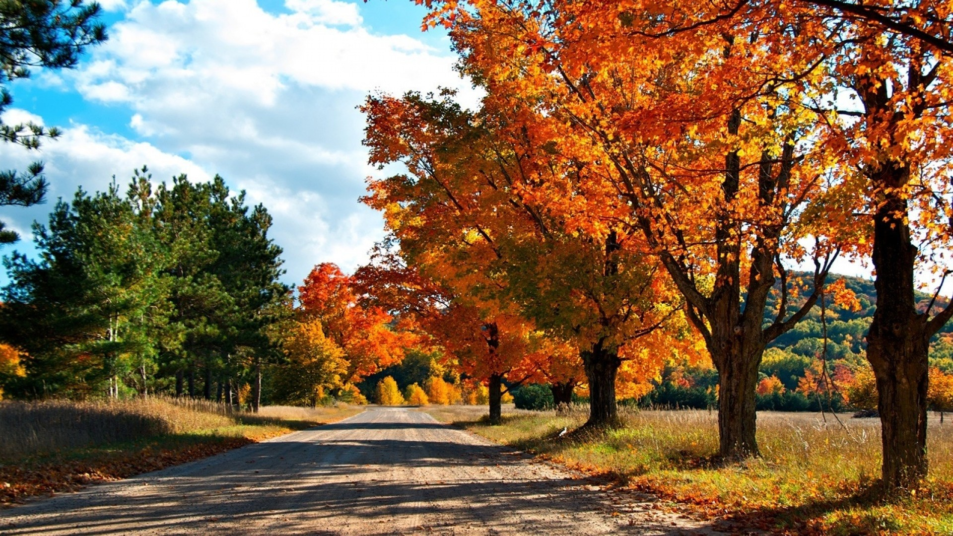 1920x1080 ... Background Full HD 1080p.  Wallpaper autumn, road, trees,  leaves, yellow, shades