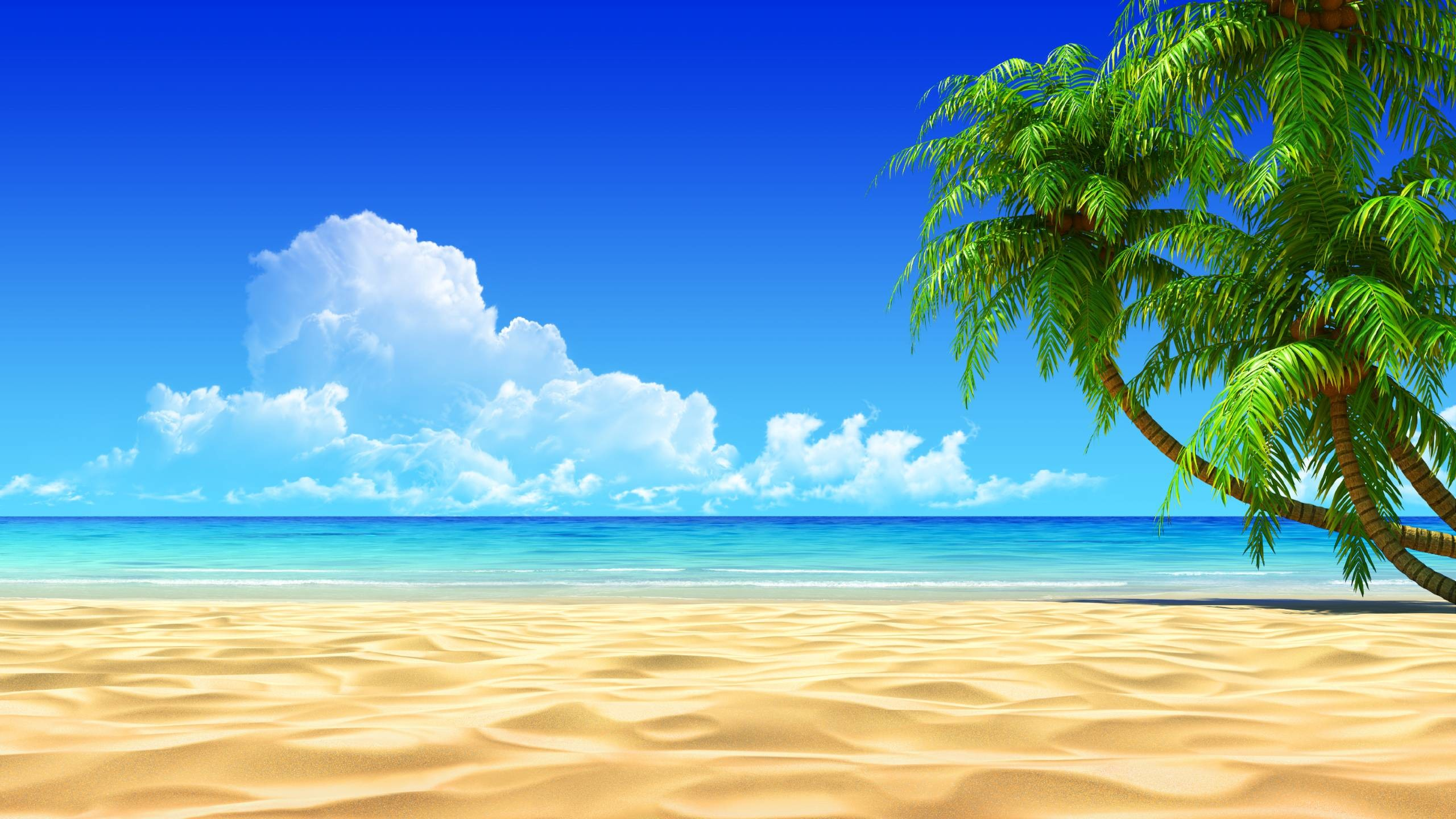 2560x1440 Tropical Beach Wallpapers Background